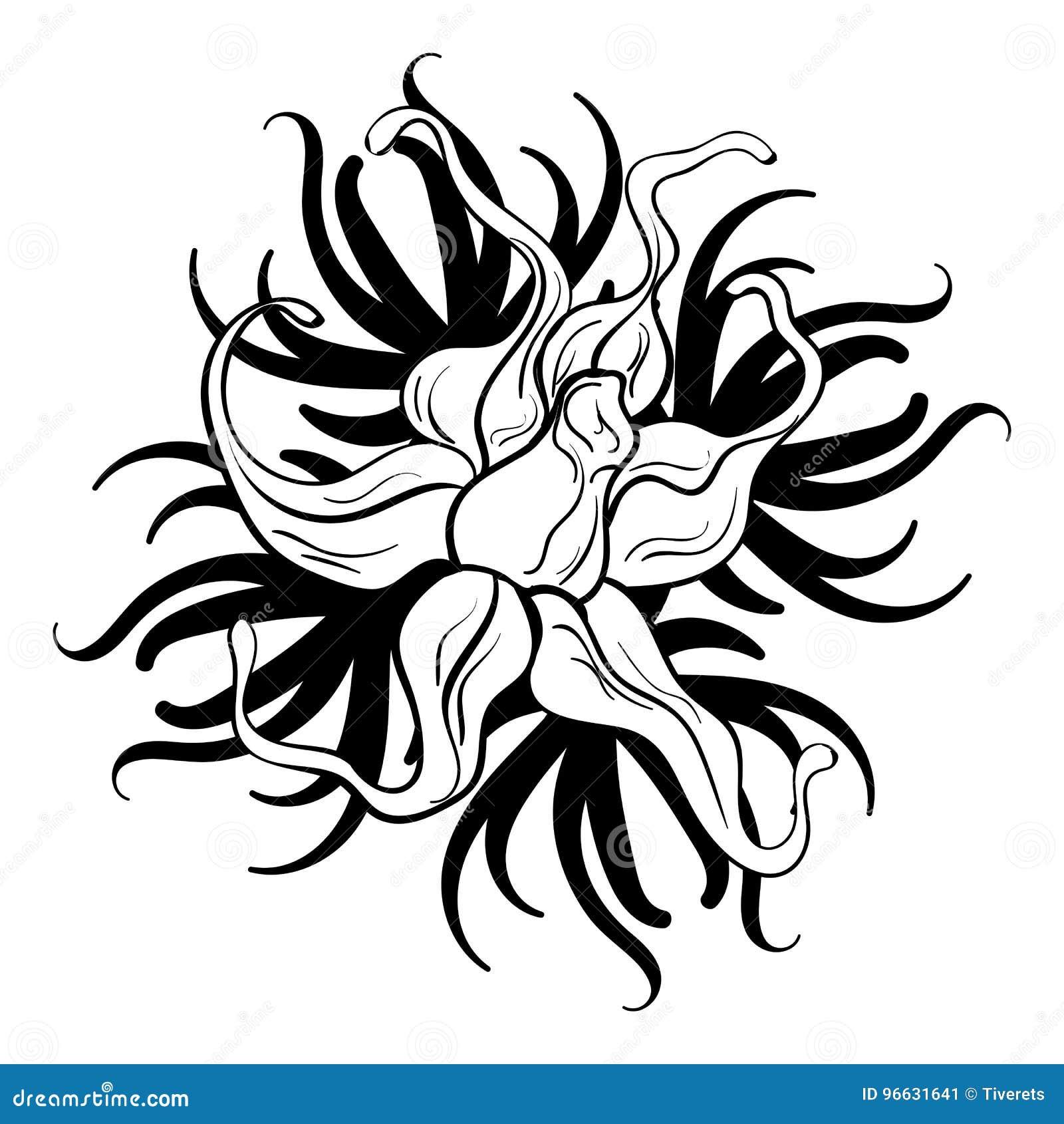 Black And White Flower Tattoo Stock Vector Illustration Of