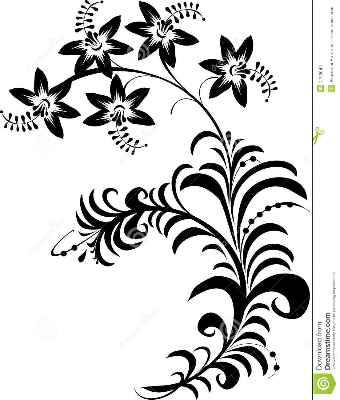 Black and white flowers stock vector. Illustration of