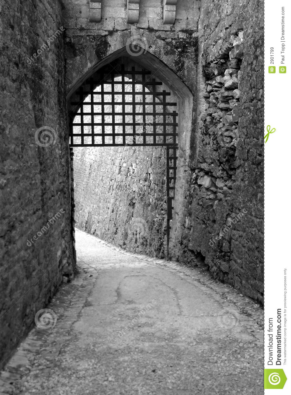Black And White Gothic Door Royalty Free Stock Images