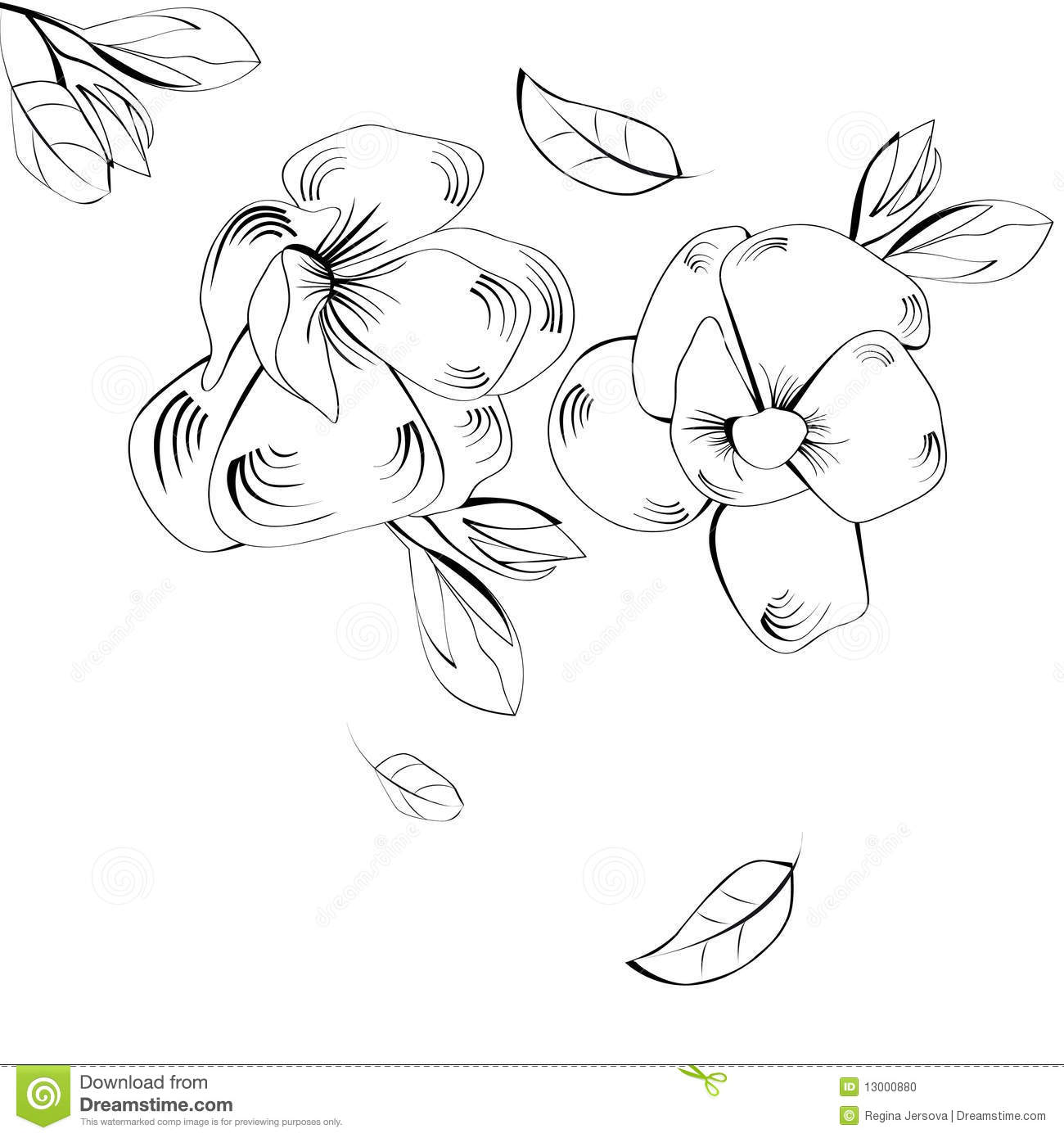 Black And White For Greeting Card Stock Vector ...
