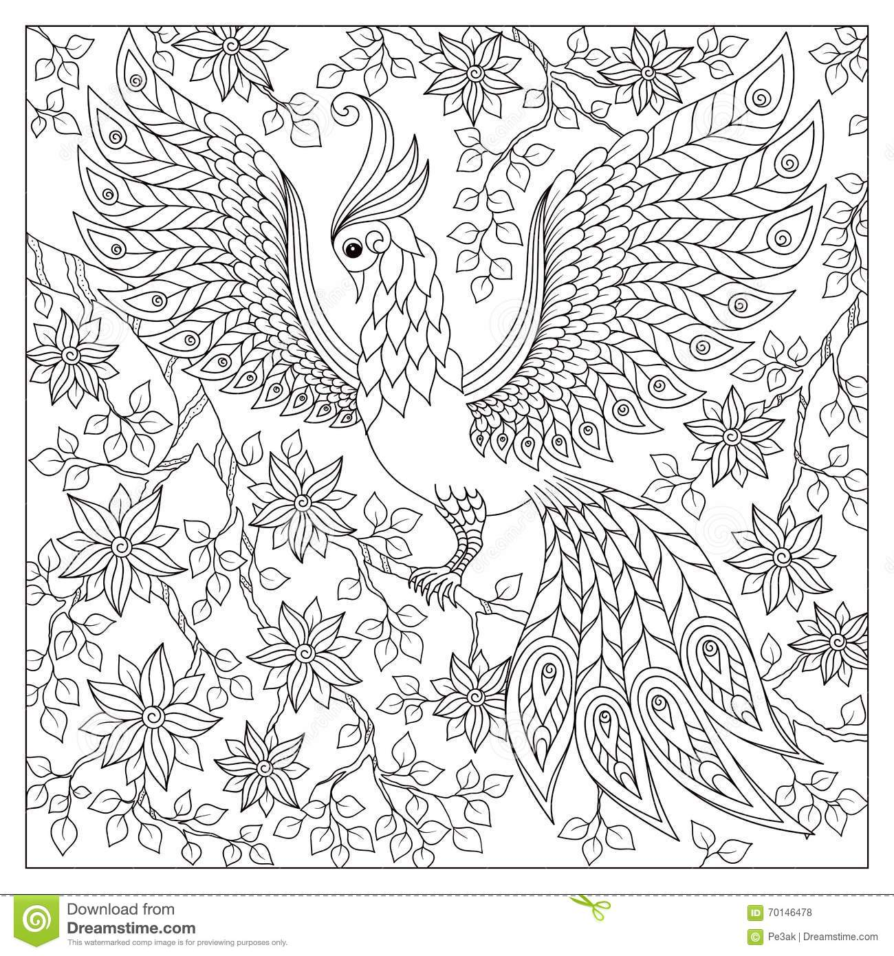 Peacock Adult Antistress Coloring Page Black And White Hand Drawn Doodle For Coloring Book