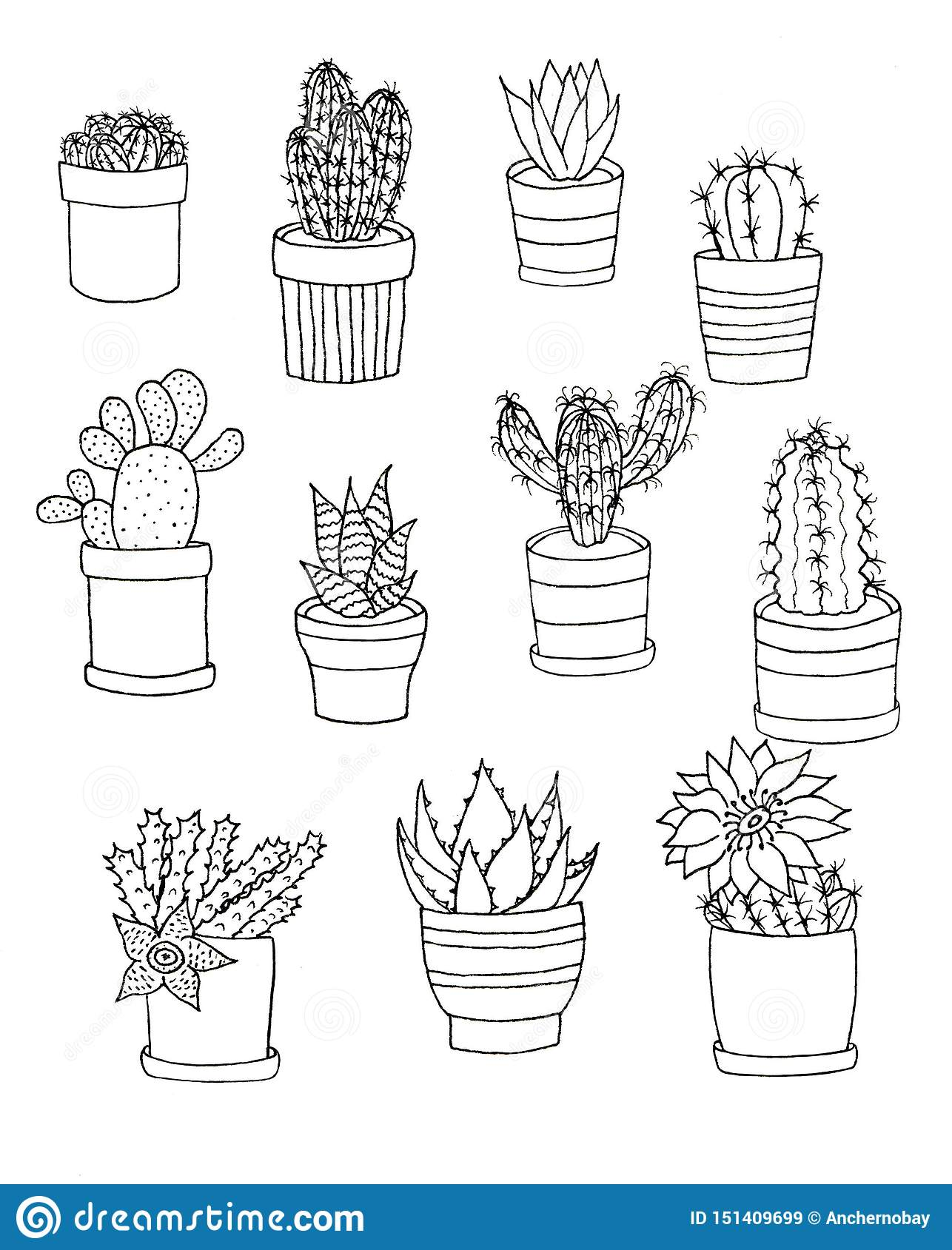 Hand drawn outline set of houseplants flower. Floral set cactus in pot isolated elements on white background
