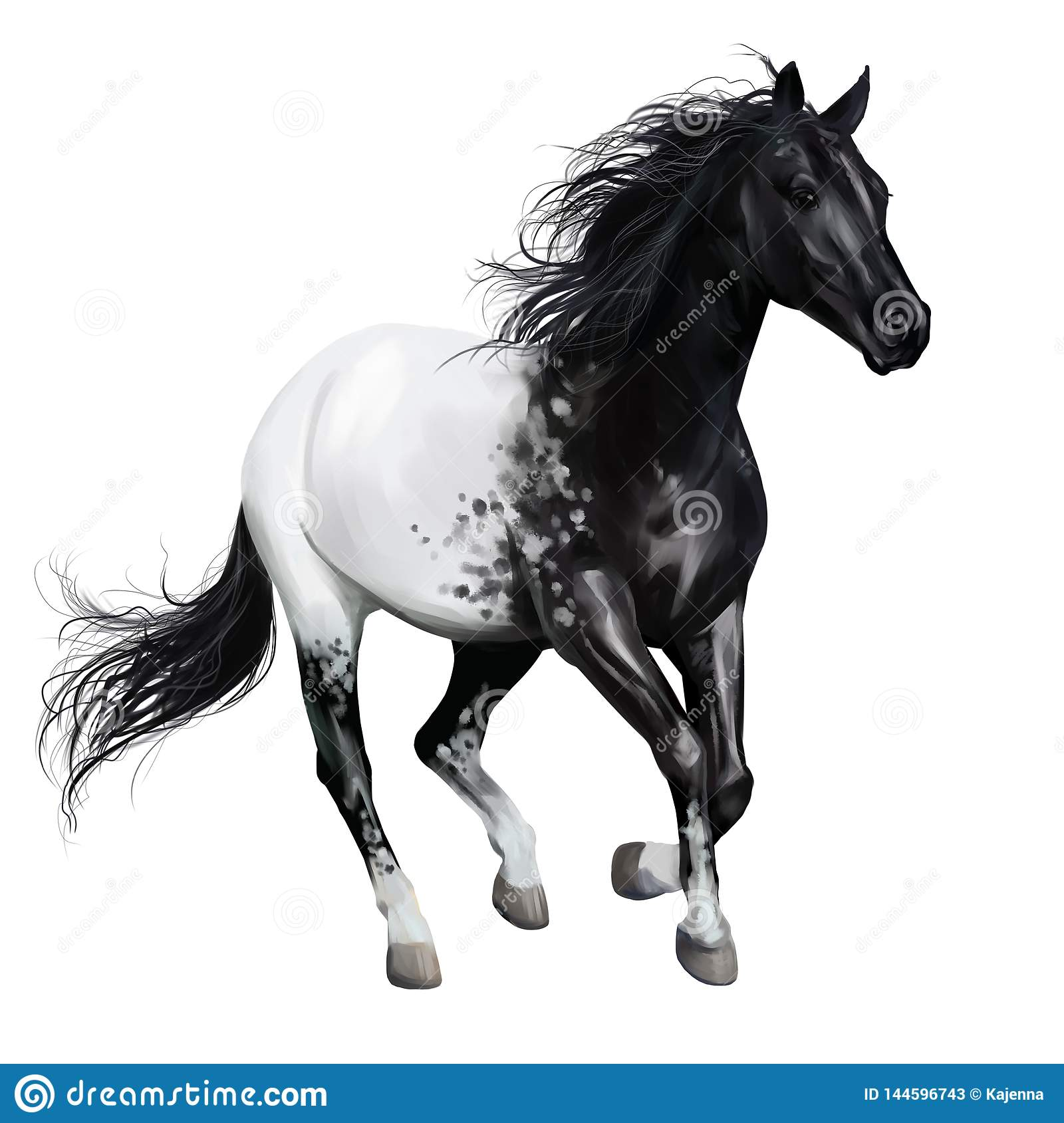 Black And White Horse Watercolor Painting Stock Illustration Illustration Of Watercolor Horses 144596743
