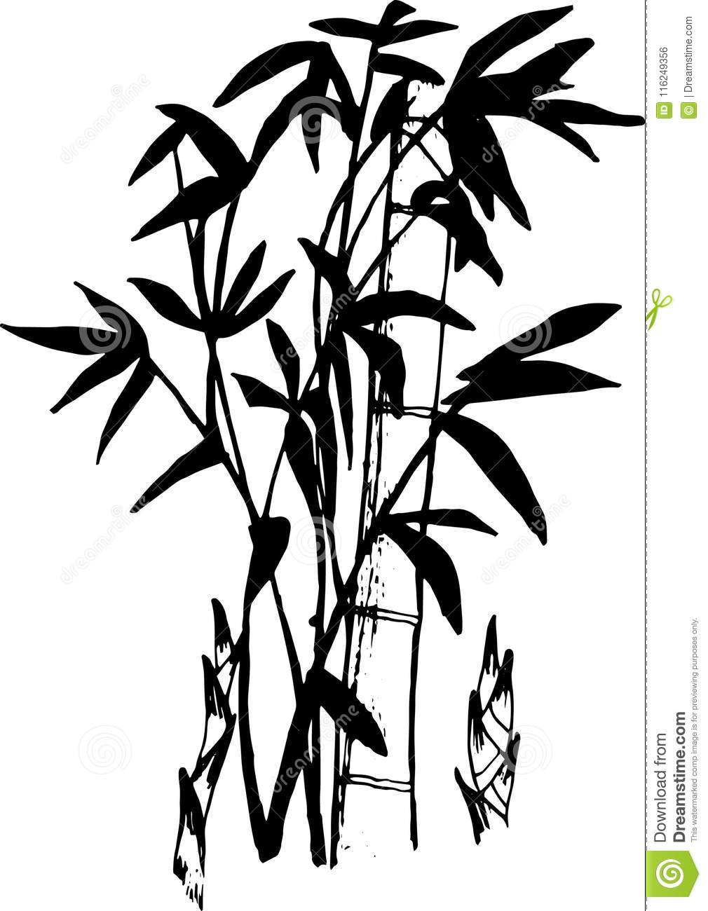 Black And White Illustration Of A Bamboo Tattoo Stock Vector
