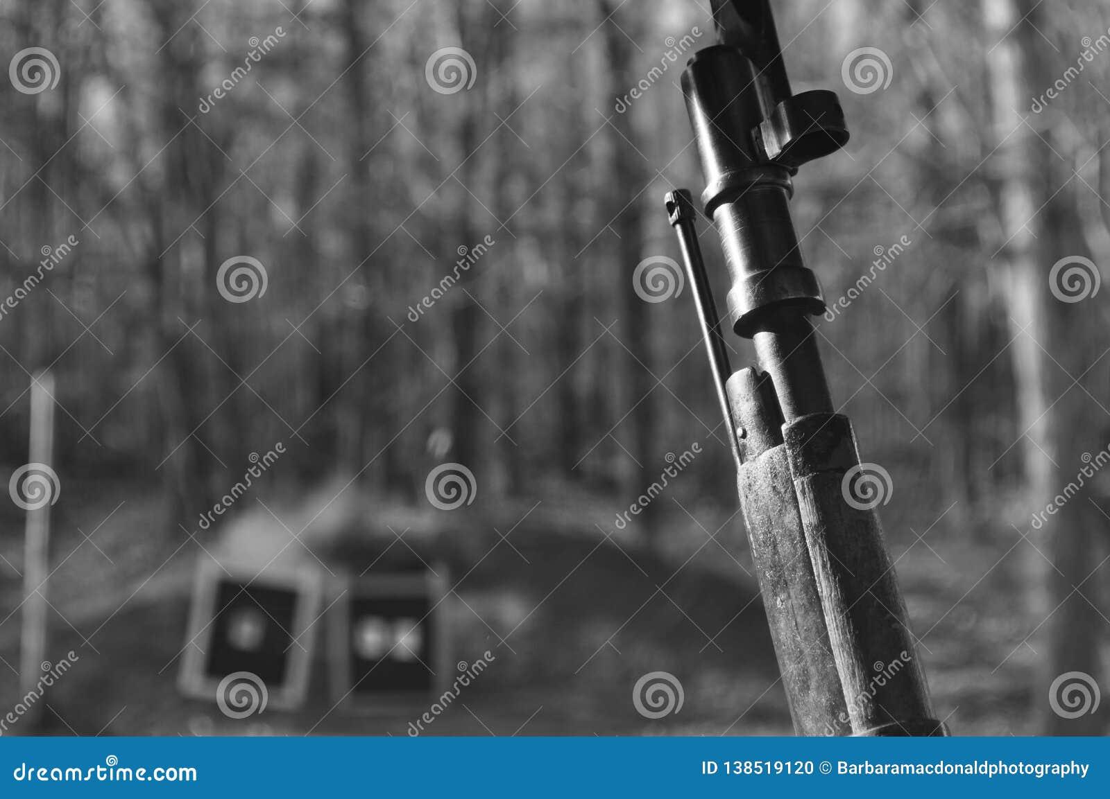 Black And White Mosin Nagant Wood Gun Rifle Stock With