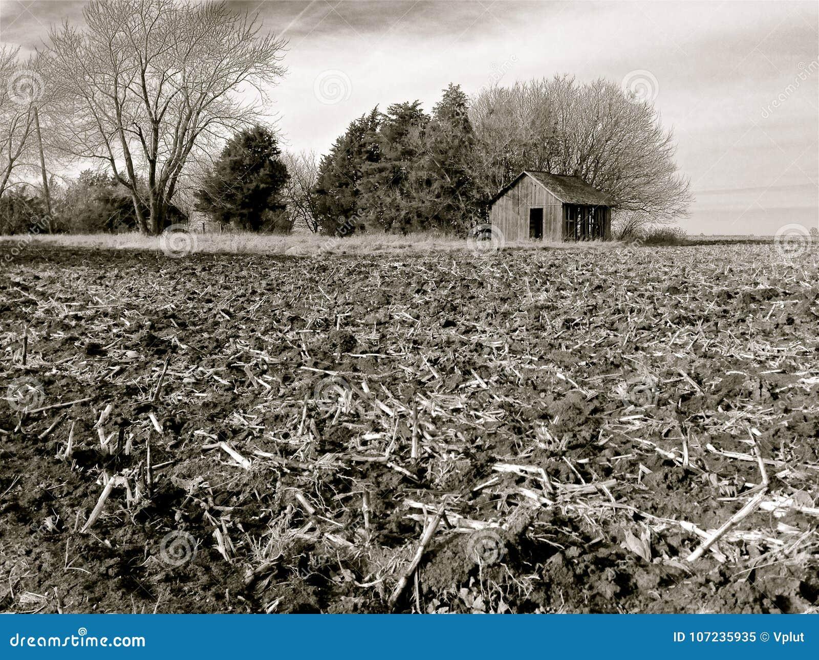Rich, Black Soil of Illinois Farm Field After Harvest