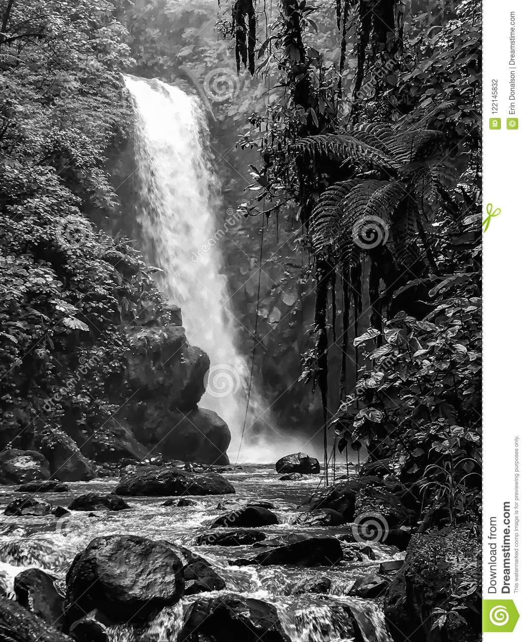Black and white large jungle waterfall and river