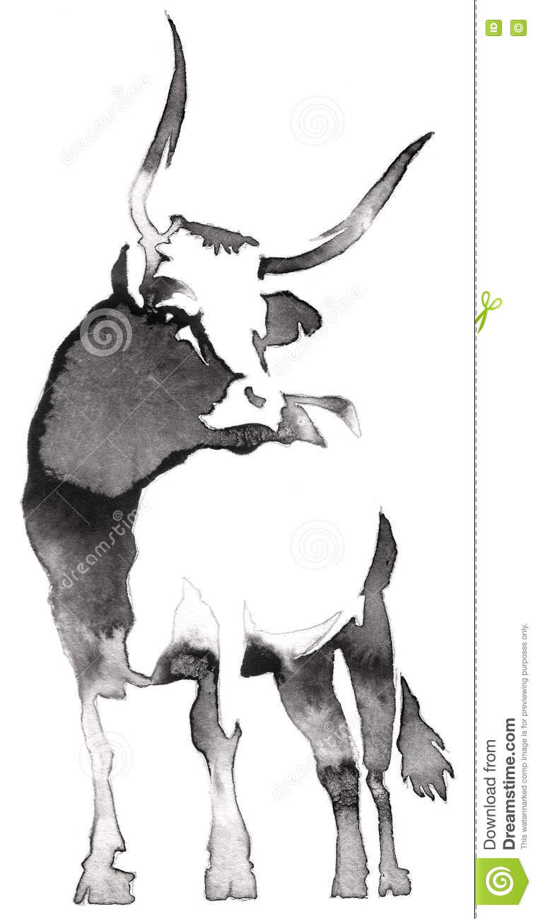 black and white monochrome painting with water and ink draw bull