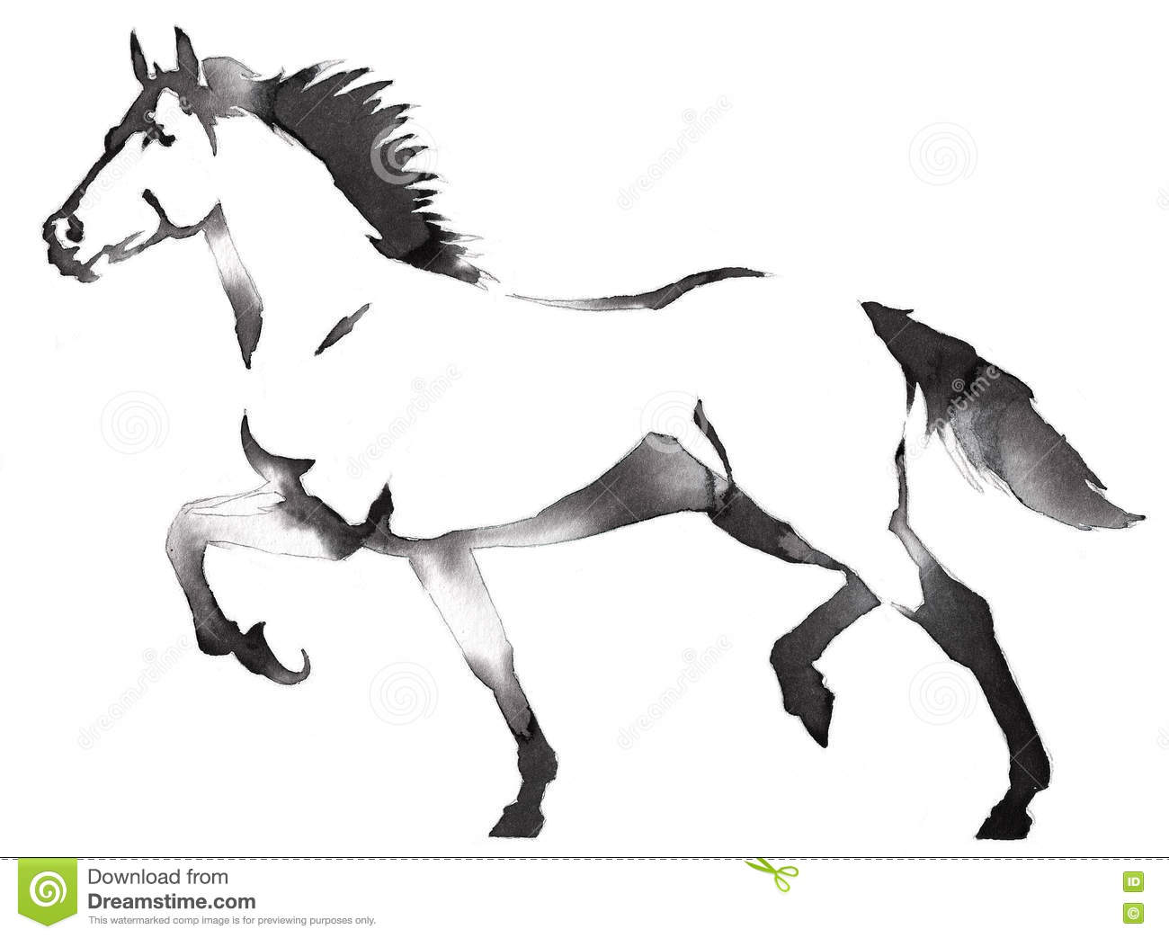Black And White Monochrome Painting With Water And Ink Draw Horse Illustration Stock Illustration Illustration Of Etching Graphic 81792392