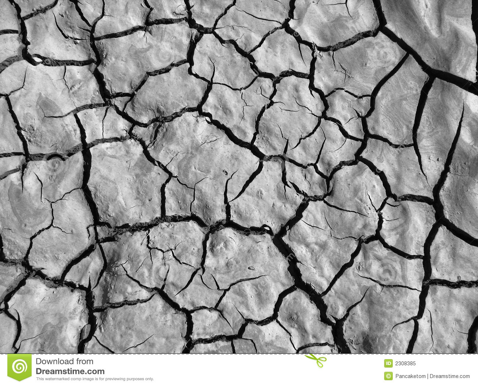 Soil Black And White