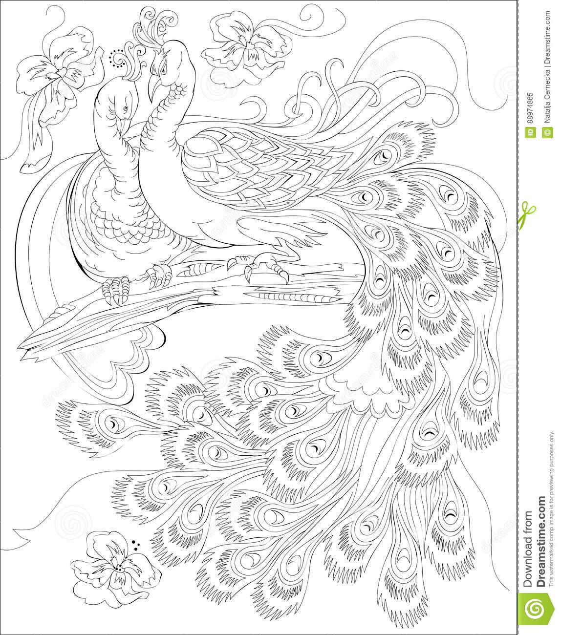 worksheet Scale Drawings Worksheet black and white page for coloring fantasy drawing of peacocks royalty free vector