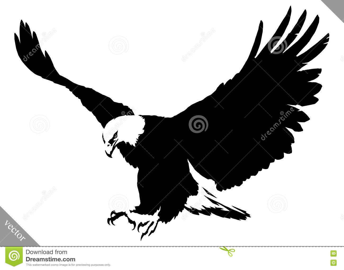 Black And White Paint Draw Eagle Bird Vector Illustration ...
