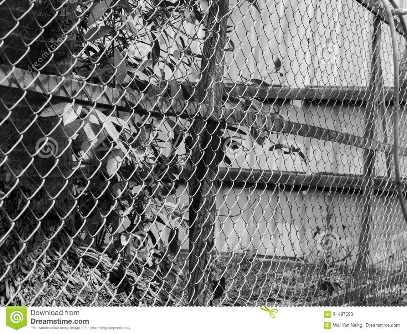 BLACK AND WHITE PHOTO OF CHAIN-LINK FENCE Stock Image - Image of ...