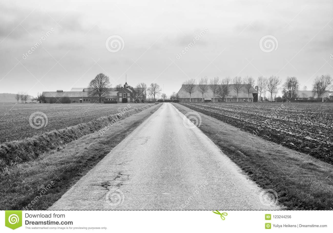 Black and white photo of a farm in the groningen countryside stock