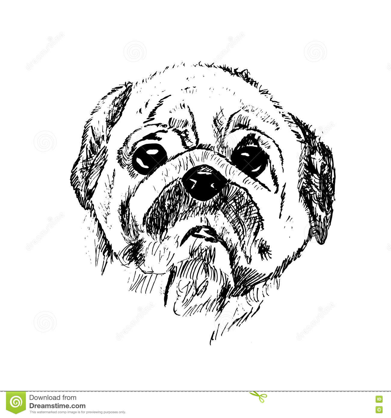 Black And White Sketch Of A Dog Stock Illustration - Illustration of