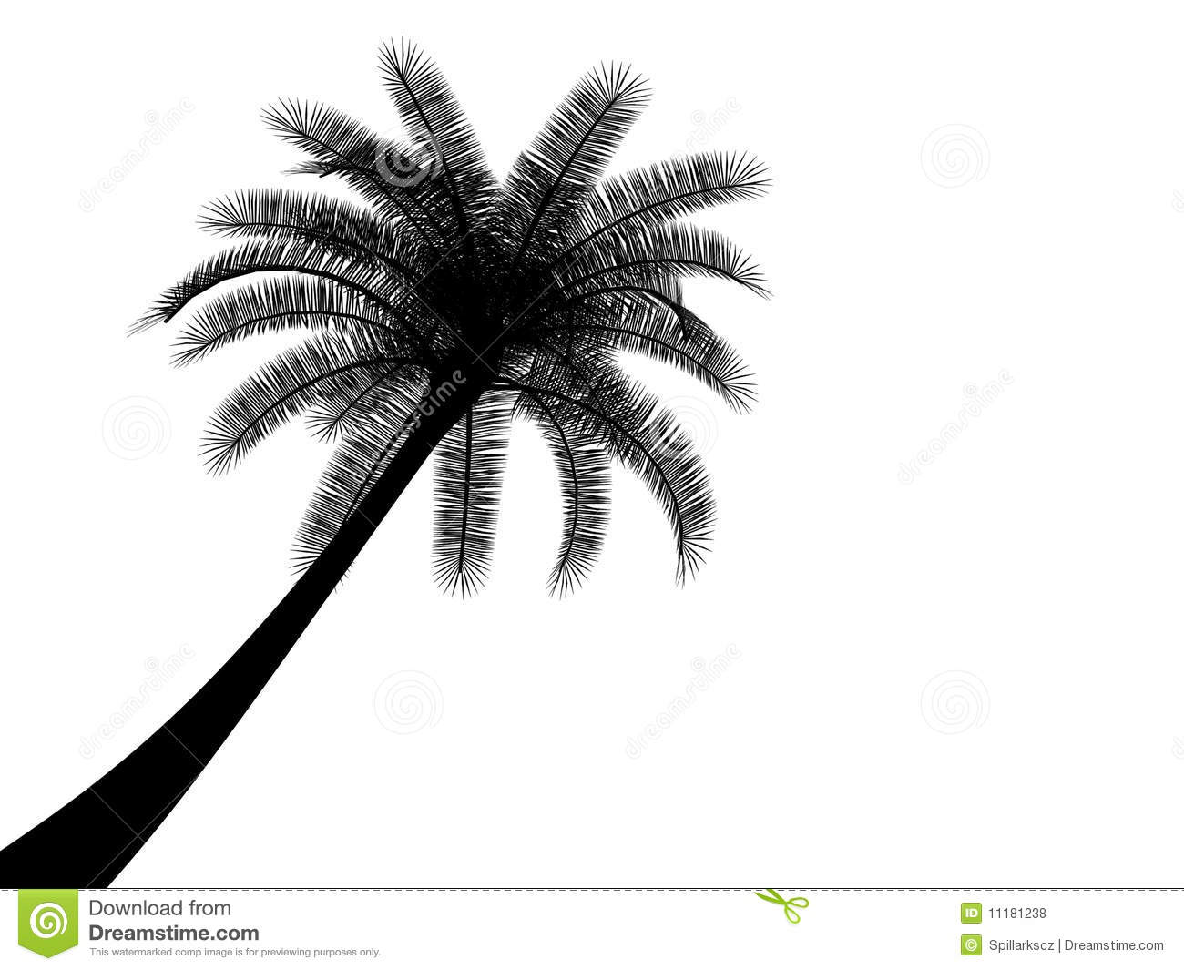 Black And White Tropical Palmtree Palm Tree Royalty Free