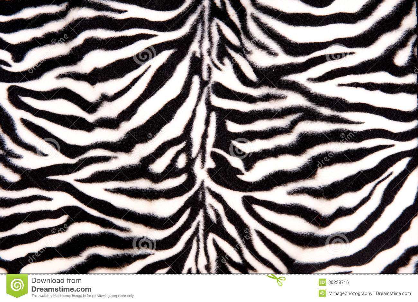 Aninimal Book: Black And White Zebra Pattern Stock Photo - Image of ...