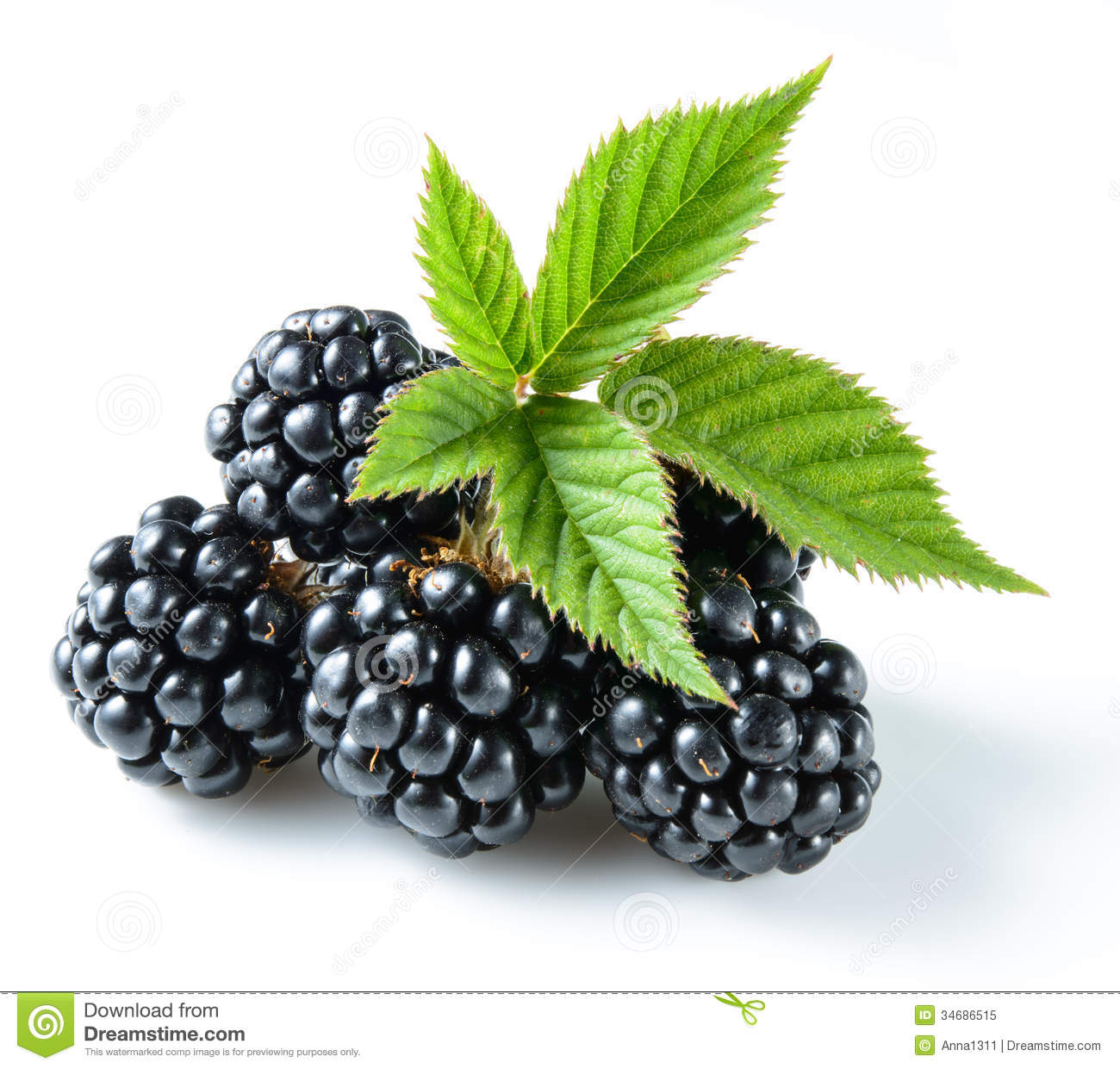Blackberries On White Royalty Free Stock Photo - Image: 34686515