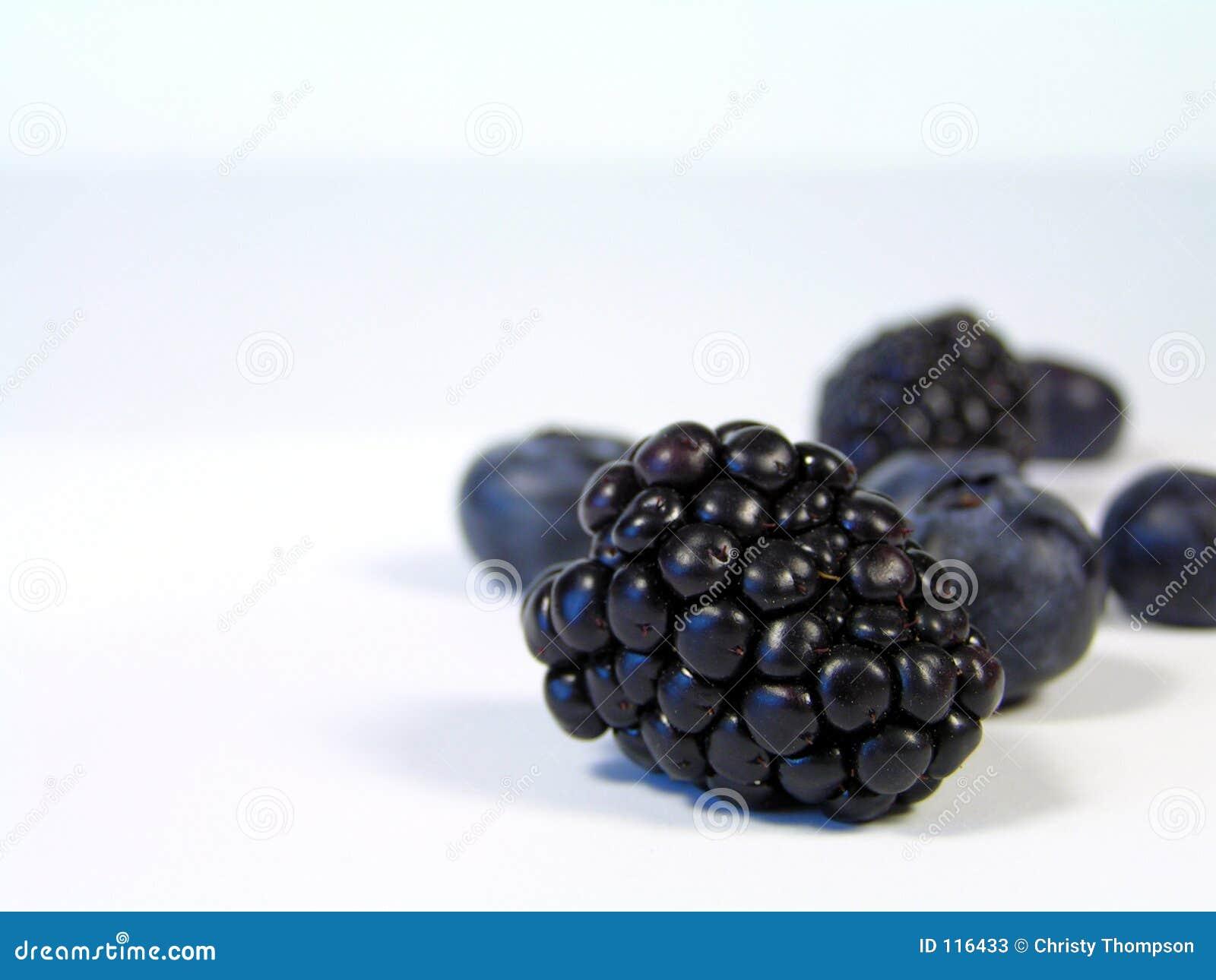 Blackberry focus