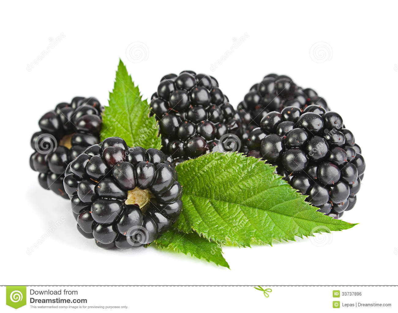 Blackberry frukt