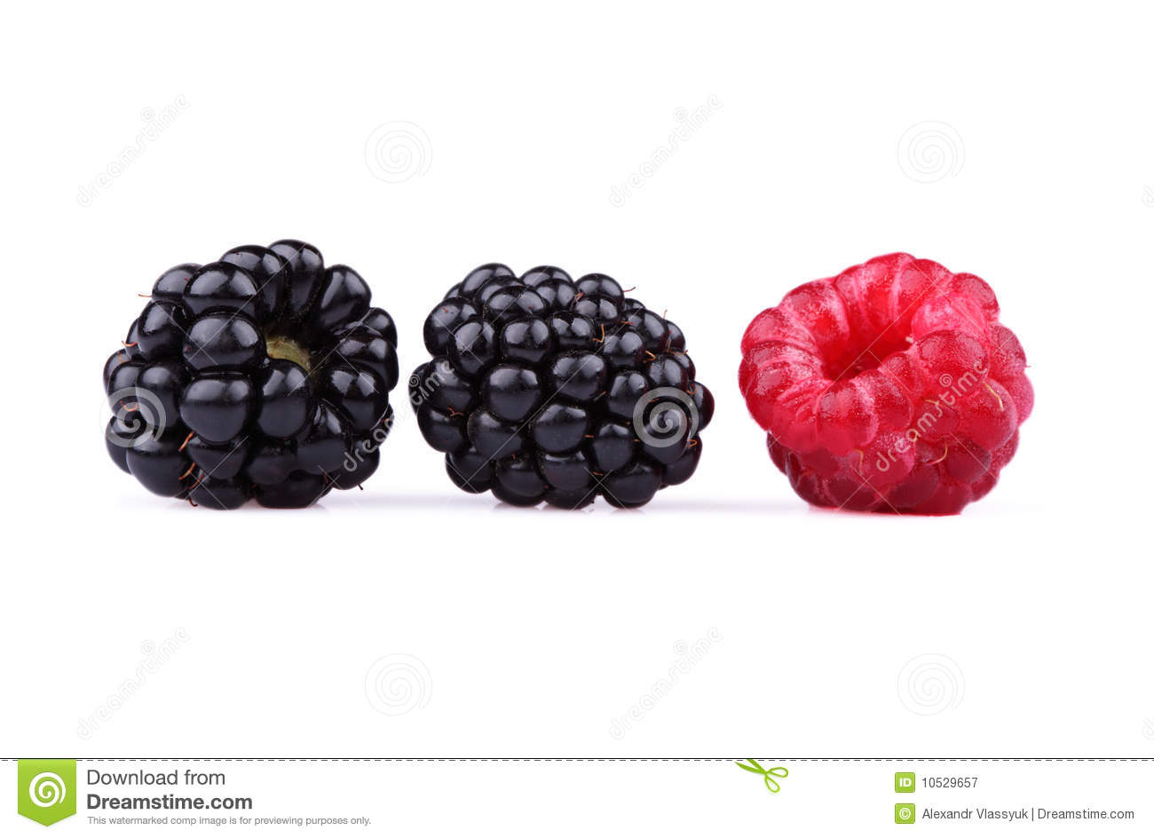 The blackberry and raspberry