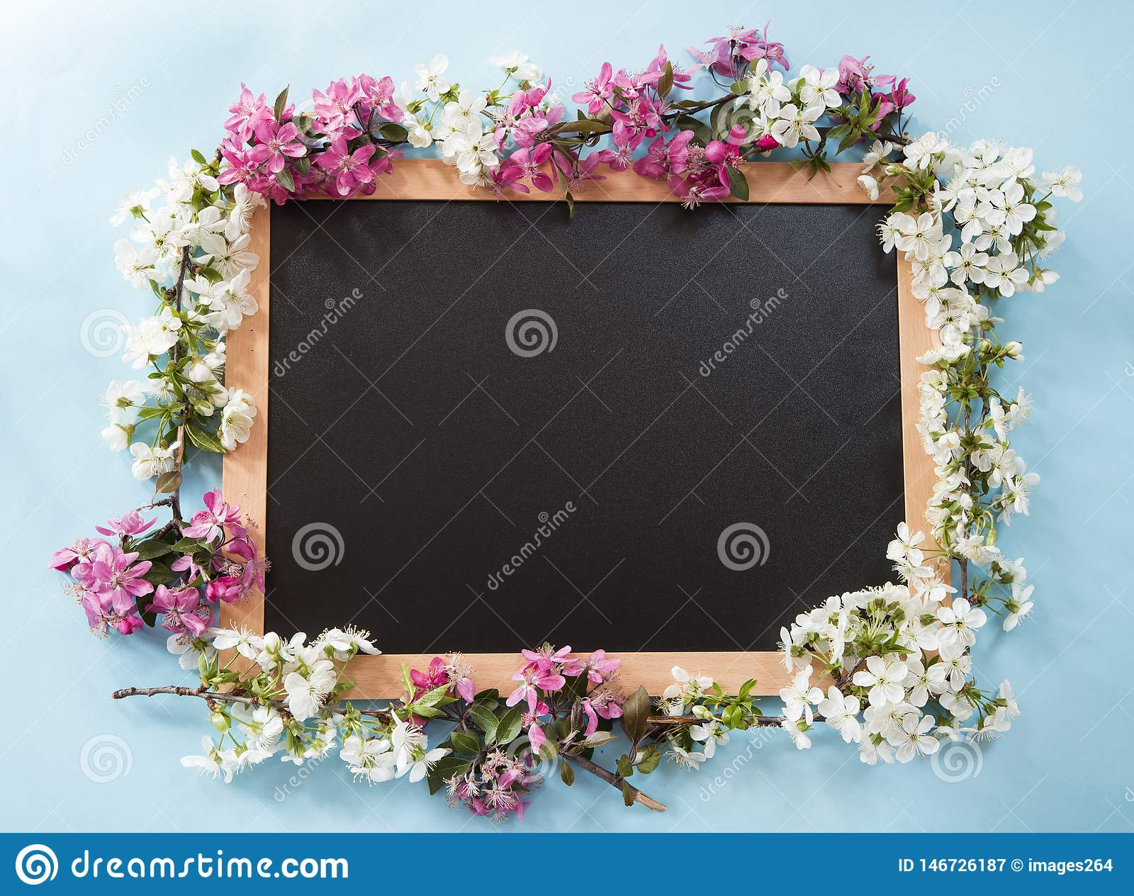Blackboard with the spring flowers
