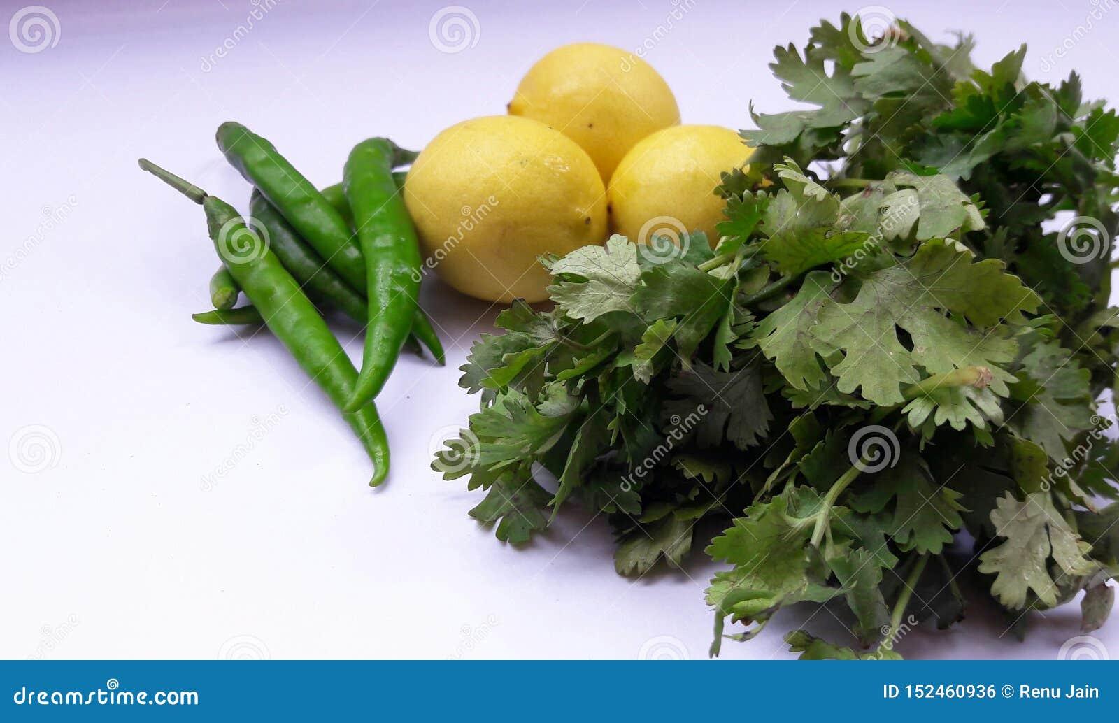 Blad för citron och för koriander för grönsakgräsplanchili som isoleras på vit backgroynd