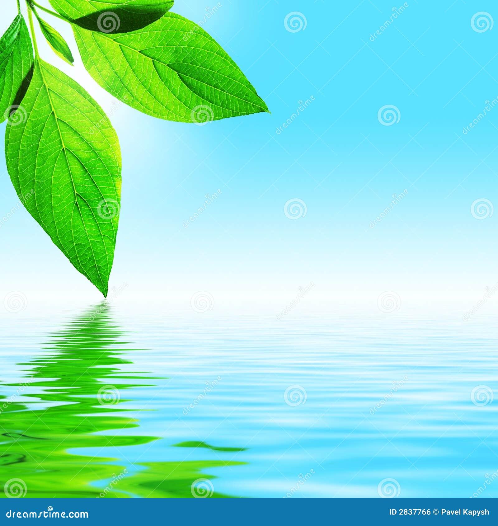 Blad, Hemel en Water