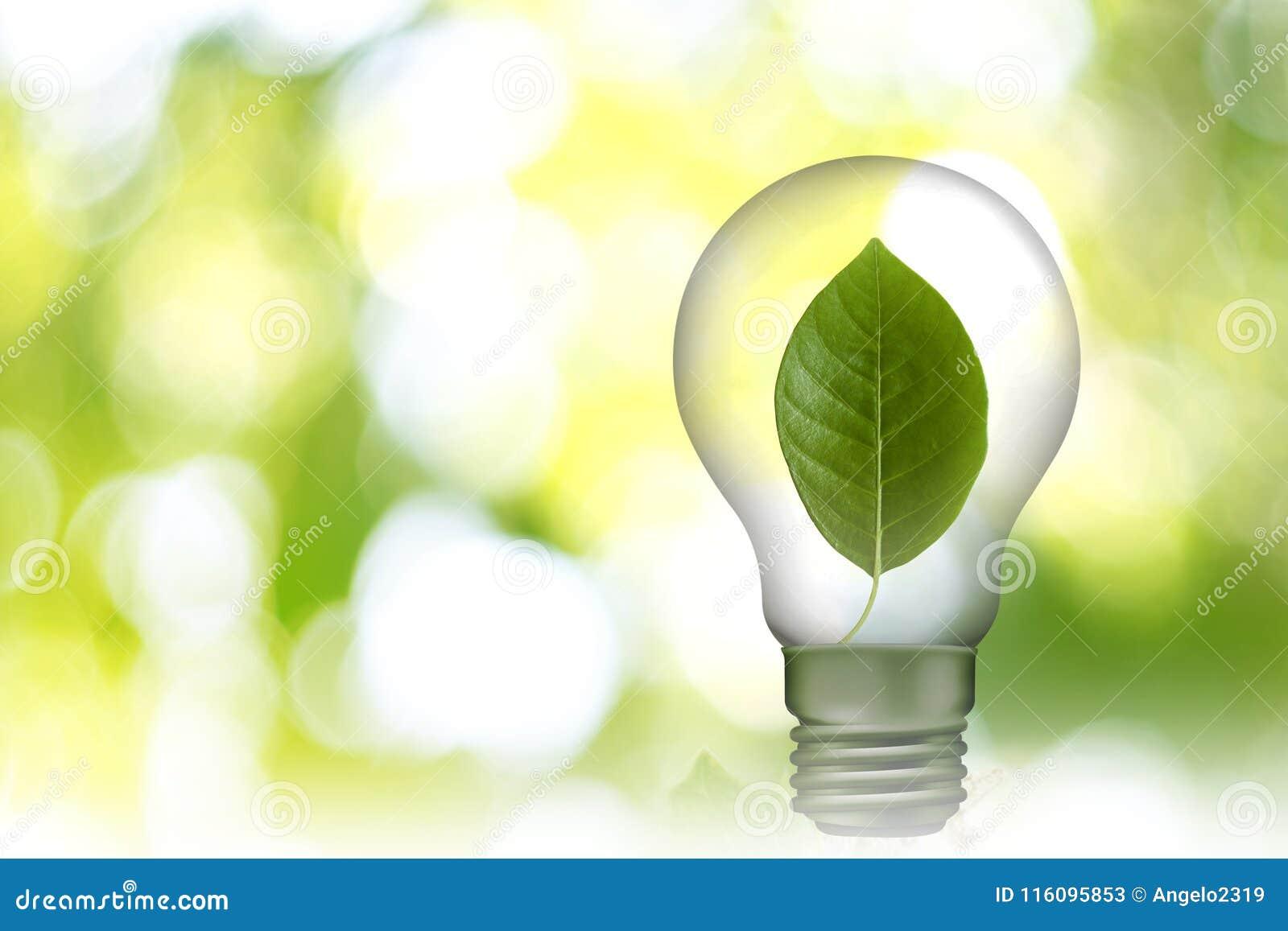 Blad in Lamp 05