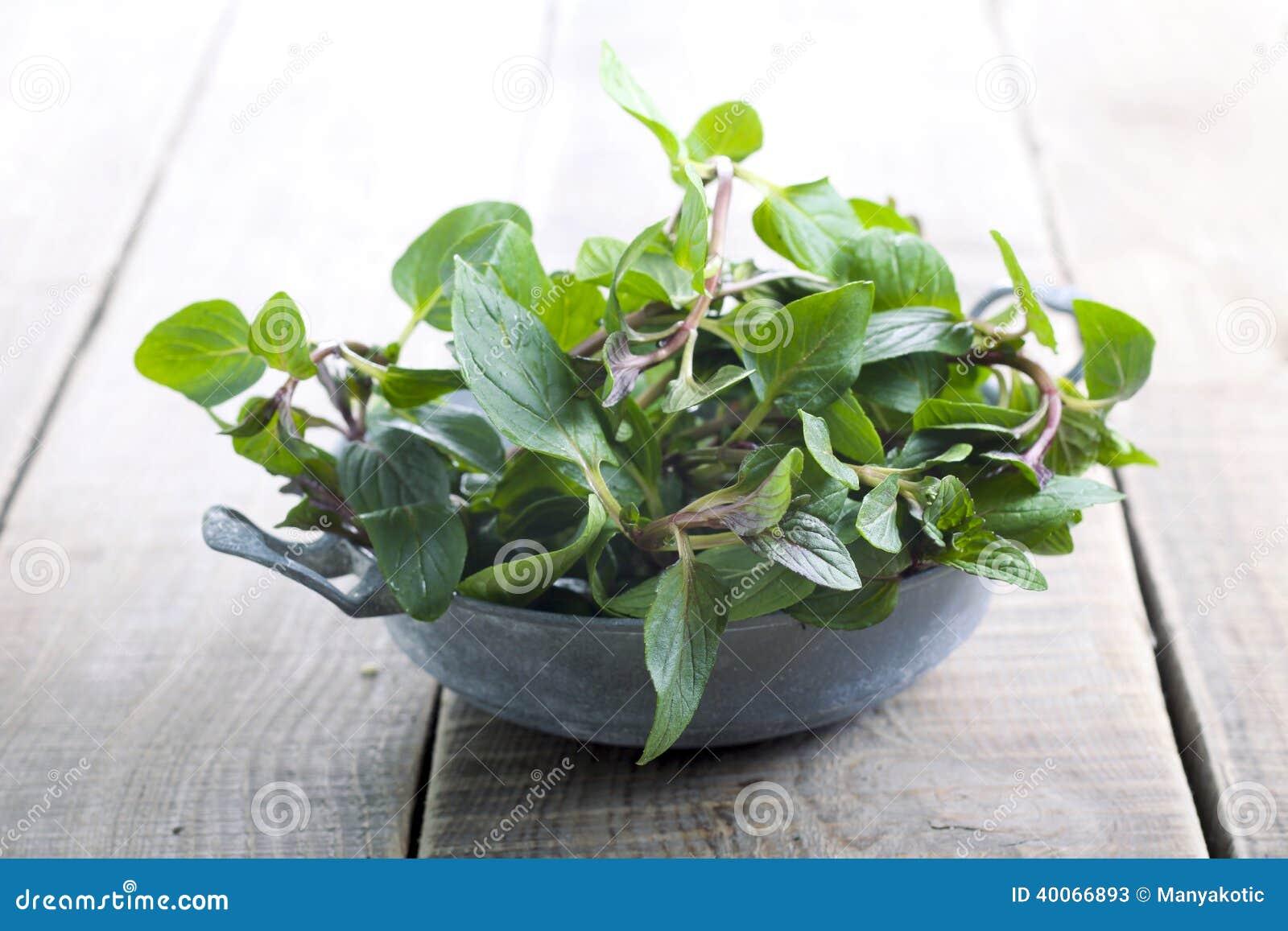 Bladeren van pepermunt