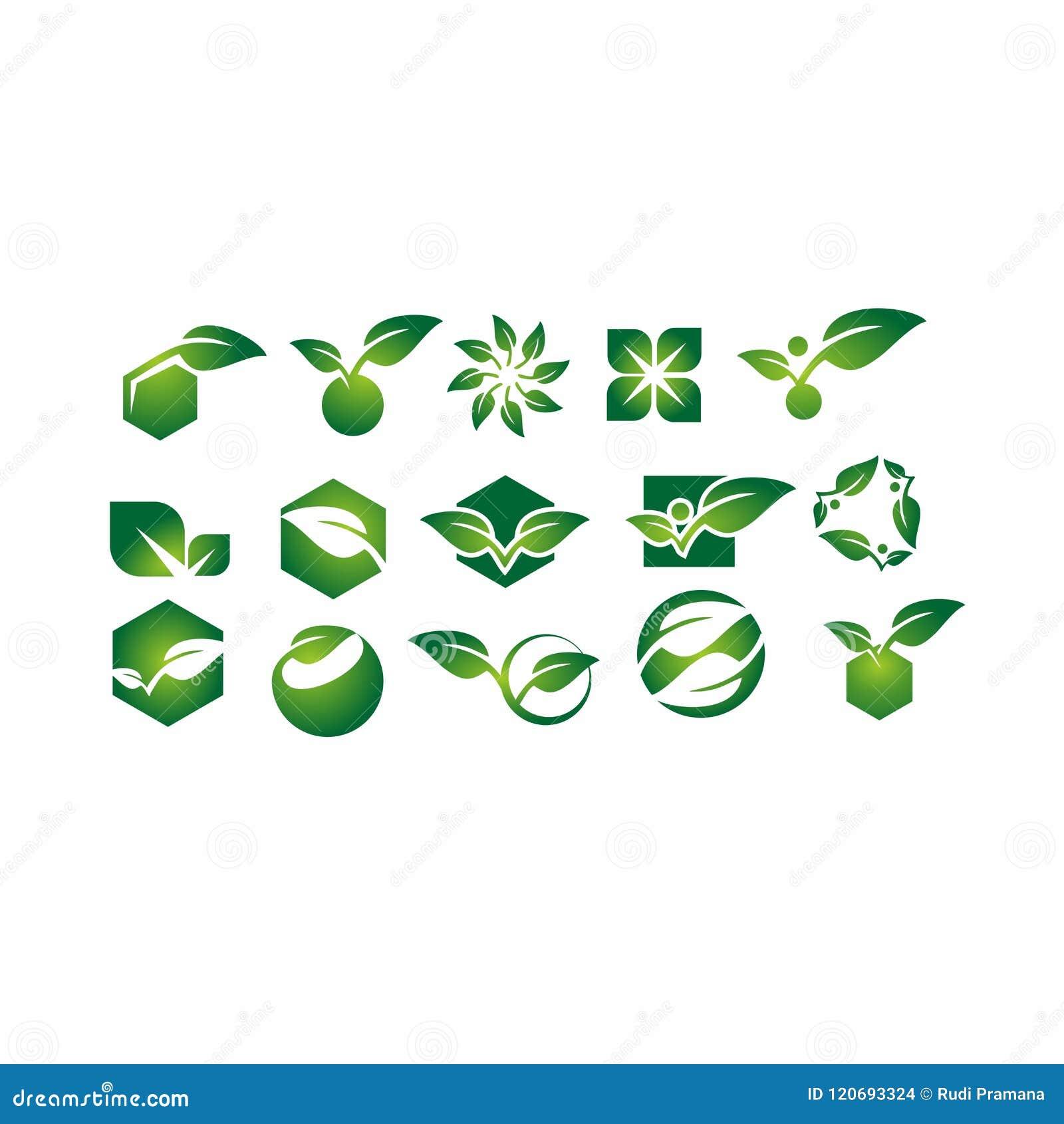 Bladet växten, logoen, ekologi, folket, wellnessen, gräsplan, sidor, uppsättning för natursymbolsymbol av vektorn planlägger