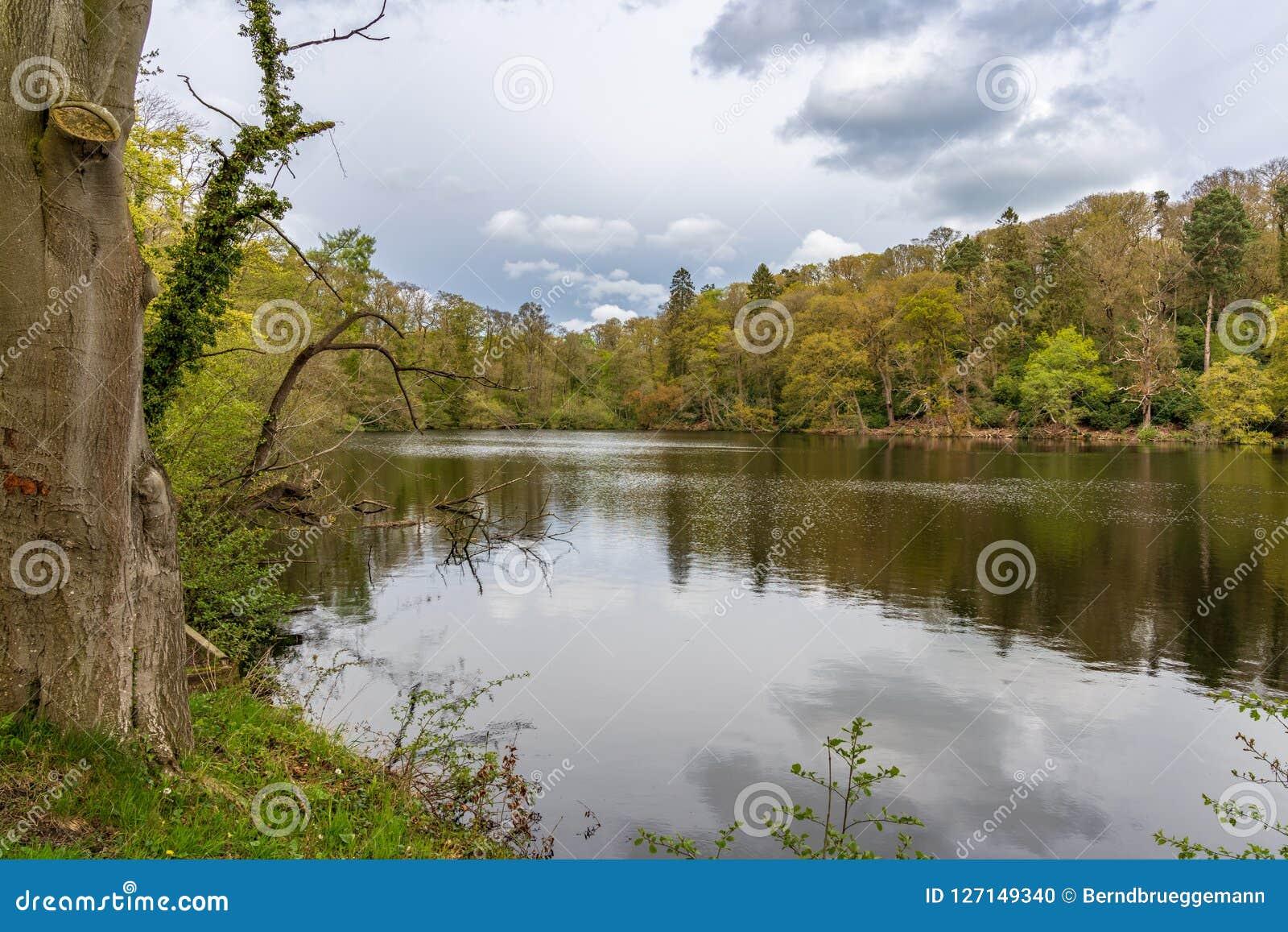 Blake Mere, Shropshire, het UK