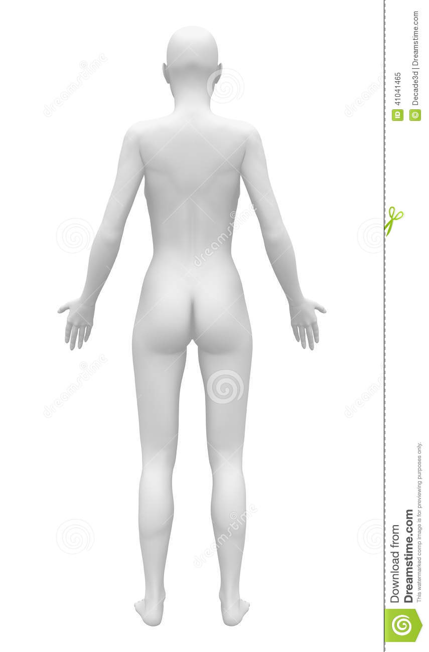 Blank Anatomy Female Figure Back View Stock Illustration