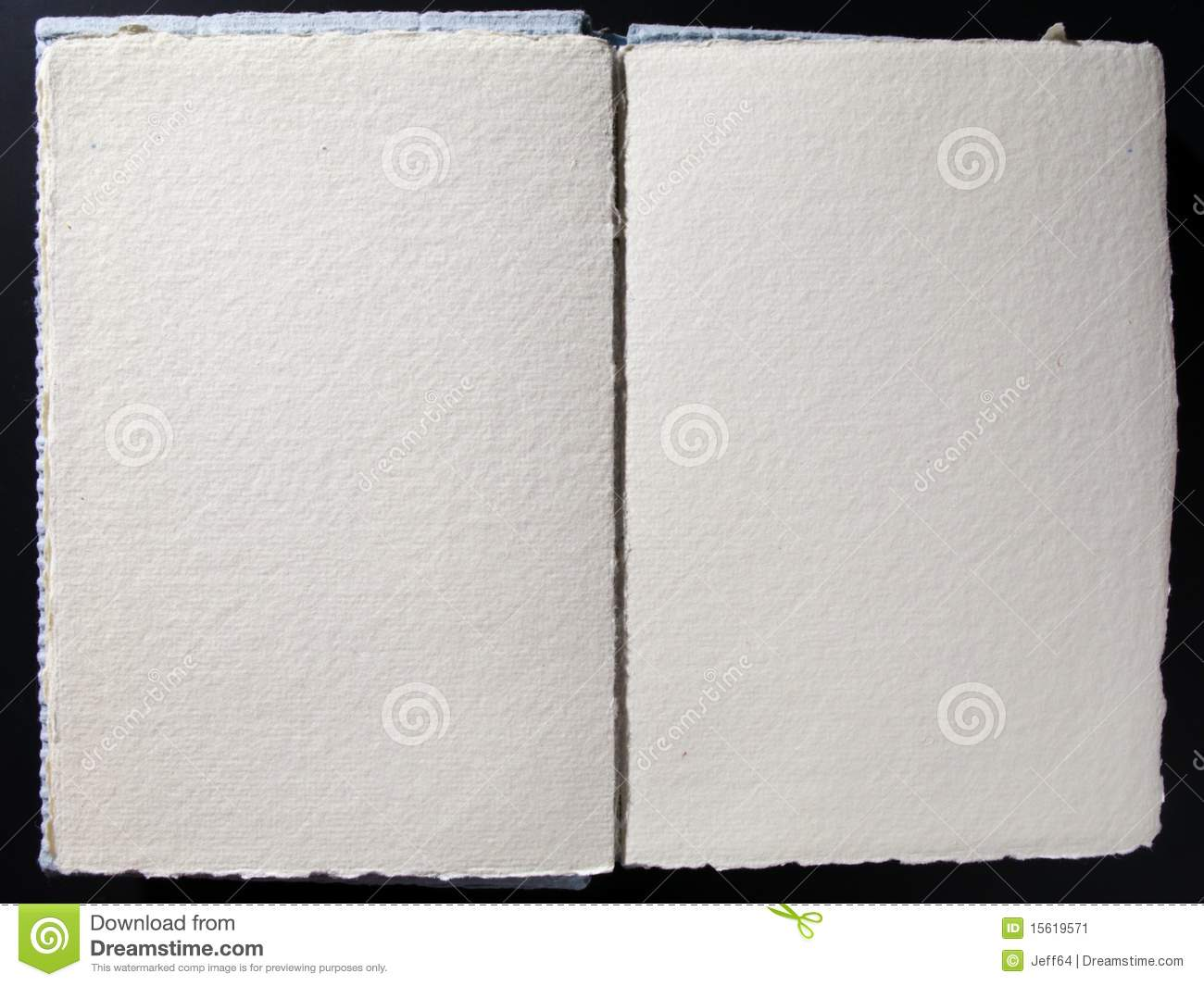 Blank book whith empty pages