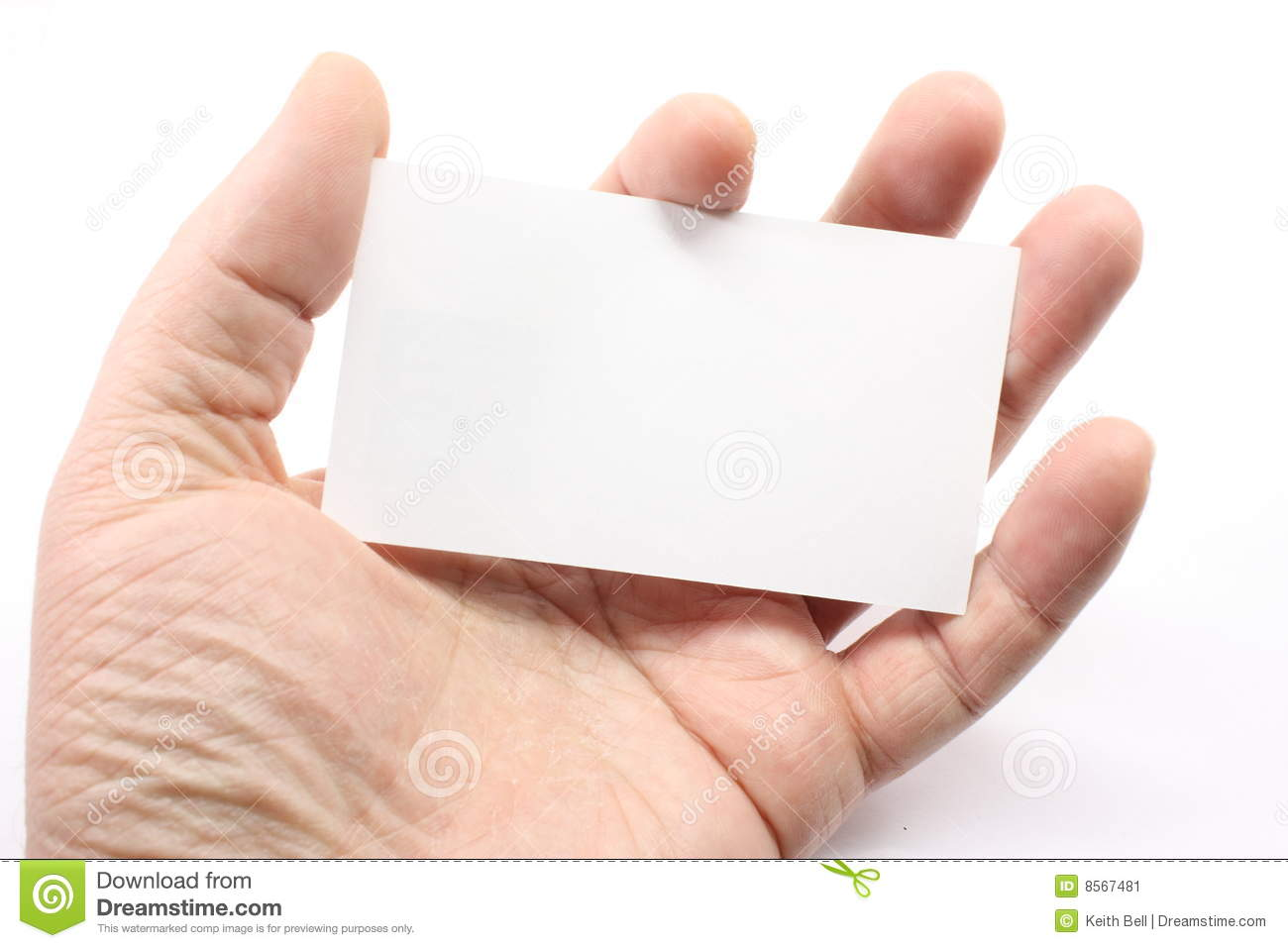 Blank Business Card In Palm Stock Image - Image: 8567481