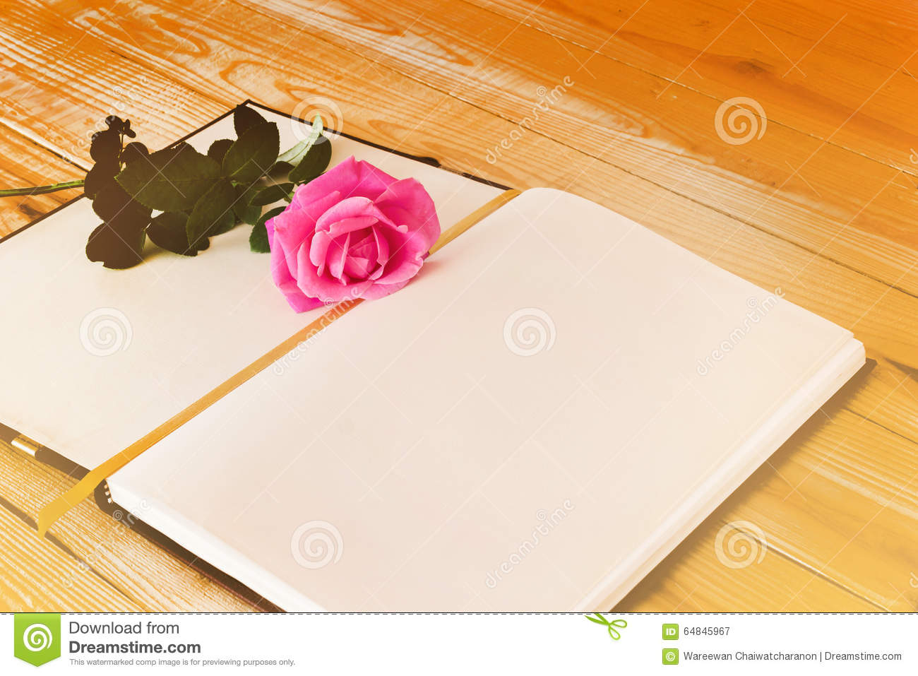 Blank Diary Note With Pink Rose In Dreamy Soft Mood Colour Stock ...