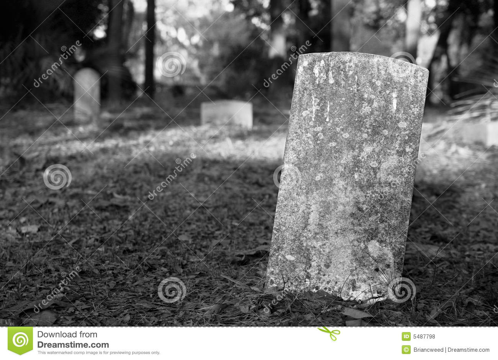blank gravestone in cemetery stock photo image of blank