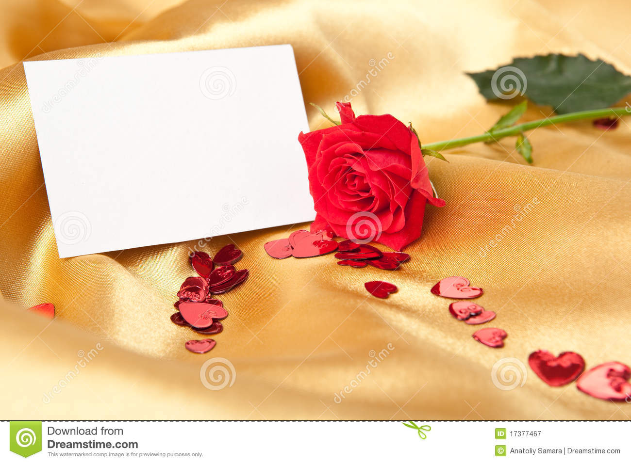 Blank greeting card and red rose stock photo 17377467 megapixl m4hsunfo