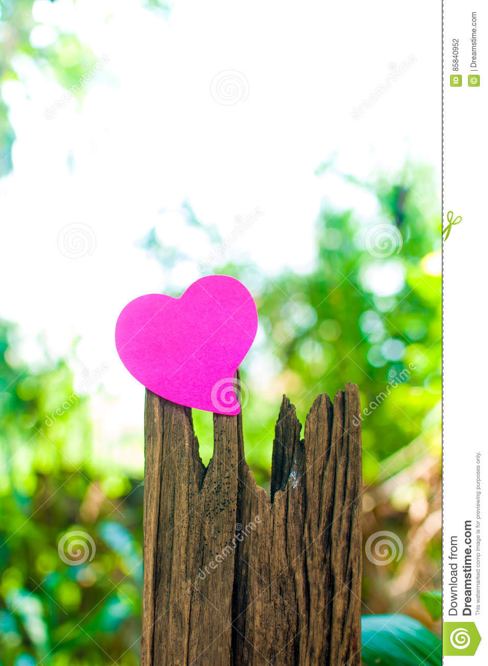 Blank note pad or sticky notes pink on timber with bokeh sunlight outdoor background