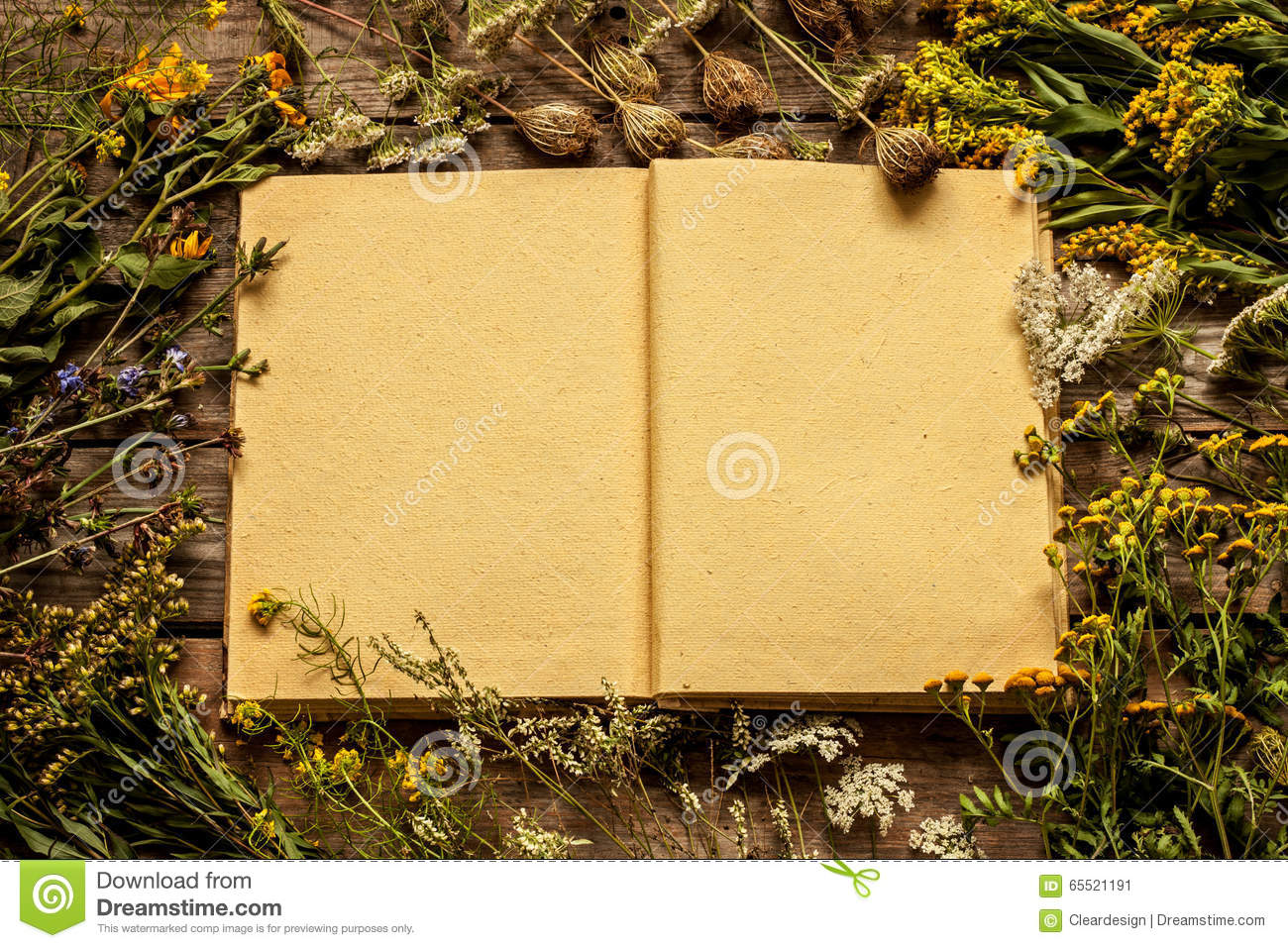 Blank opened book with late summer natural meadow flowers and plants around