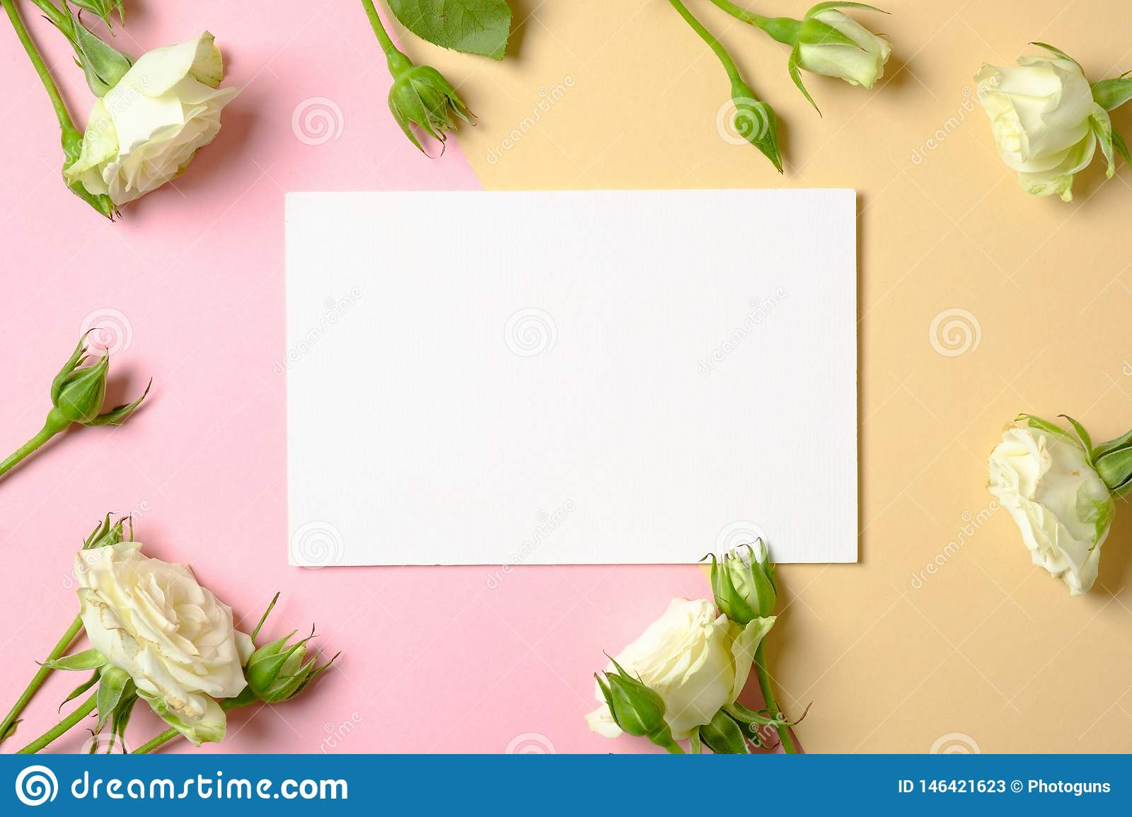 blank paper card and frame border of roses flower on