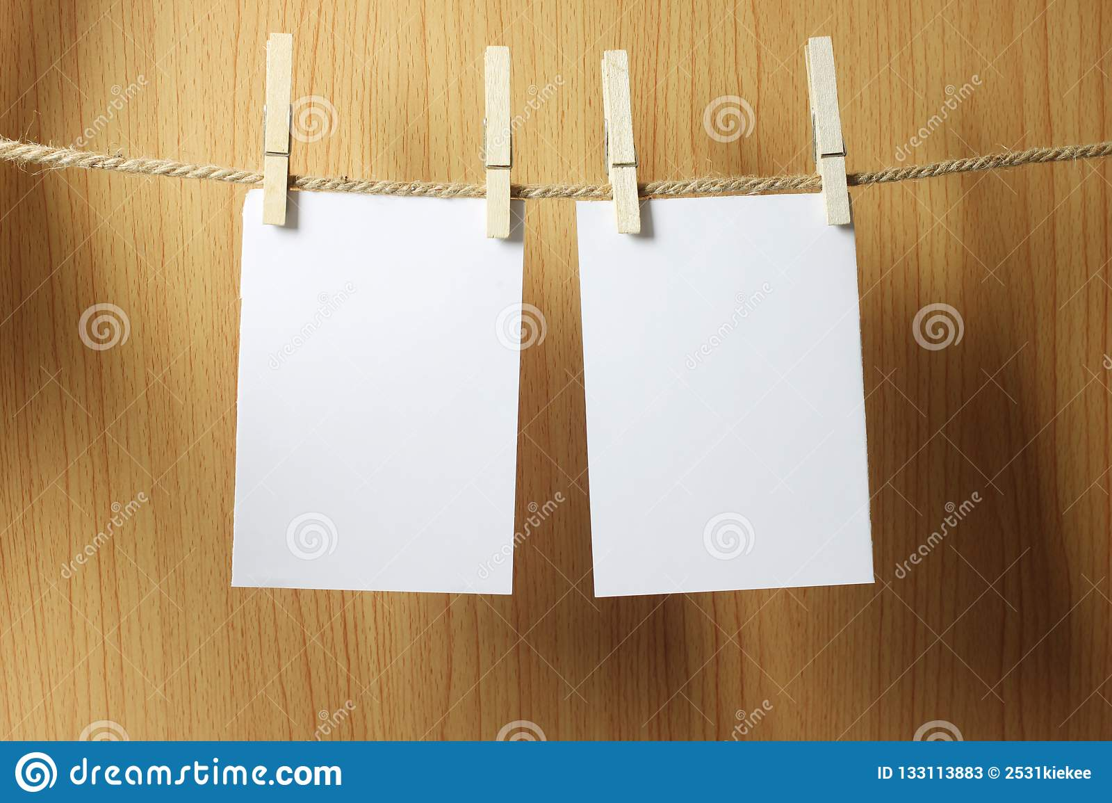 Blank paper hangs on the brown rope with Wooden paper clips on w