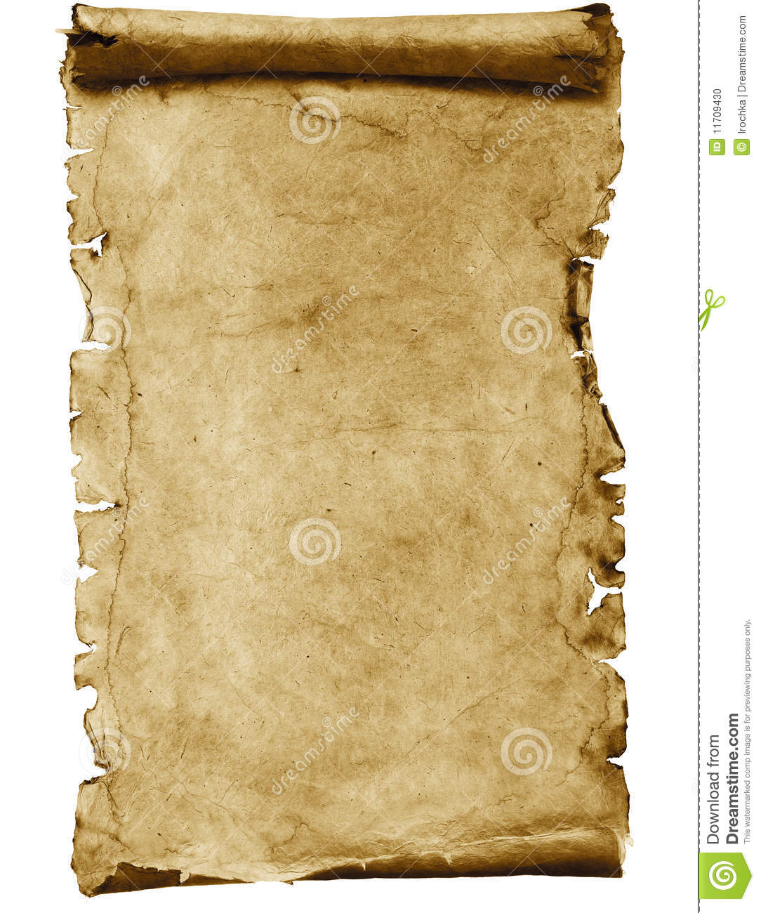 Blank parchment scroll stock photo. Image of empty ...