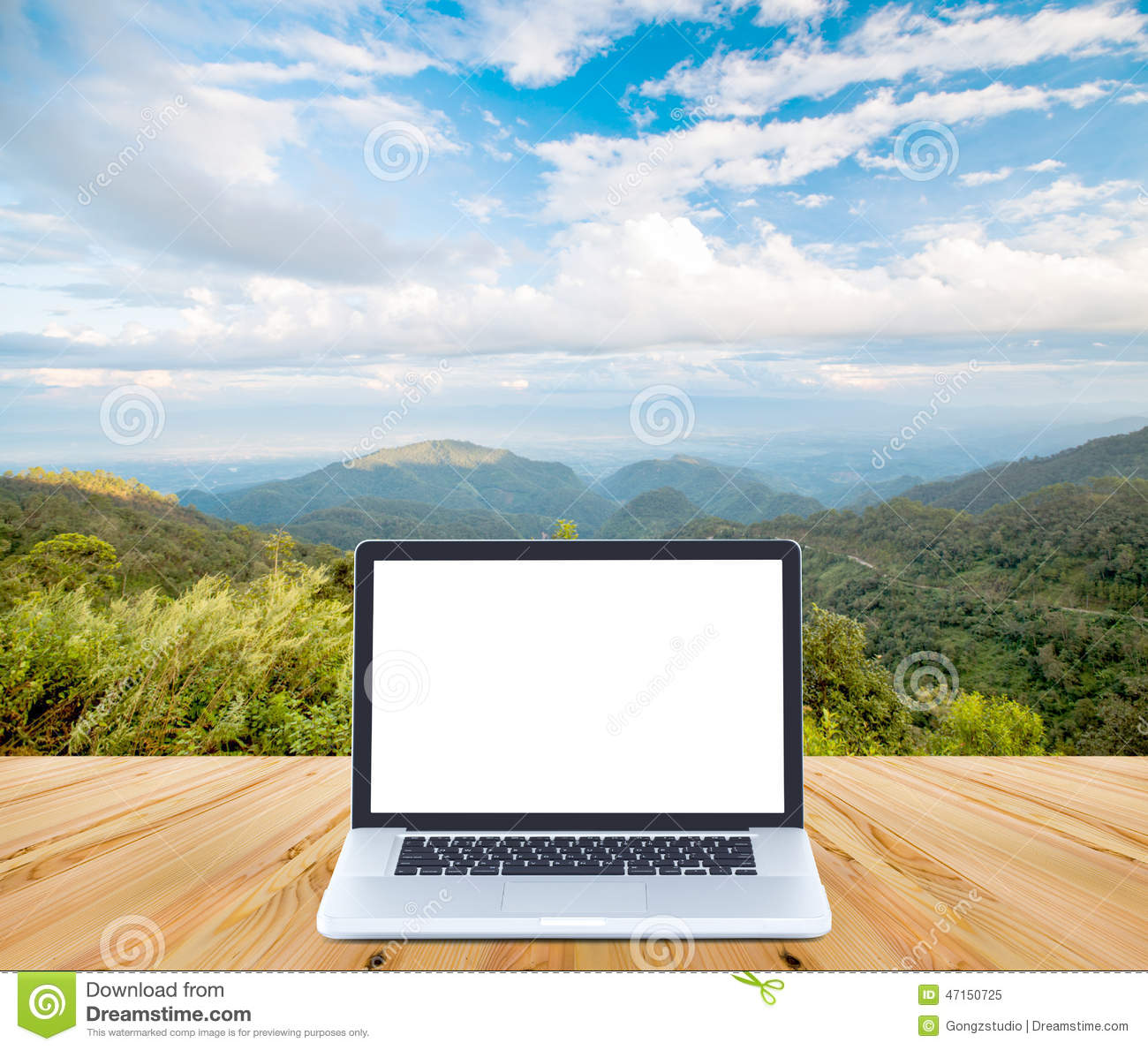 Blank Screen Laptop Computer On Wood With Mountain And