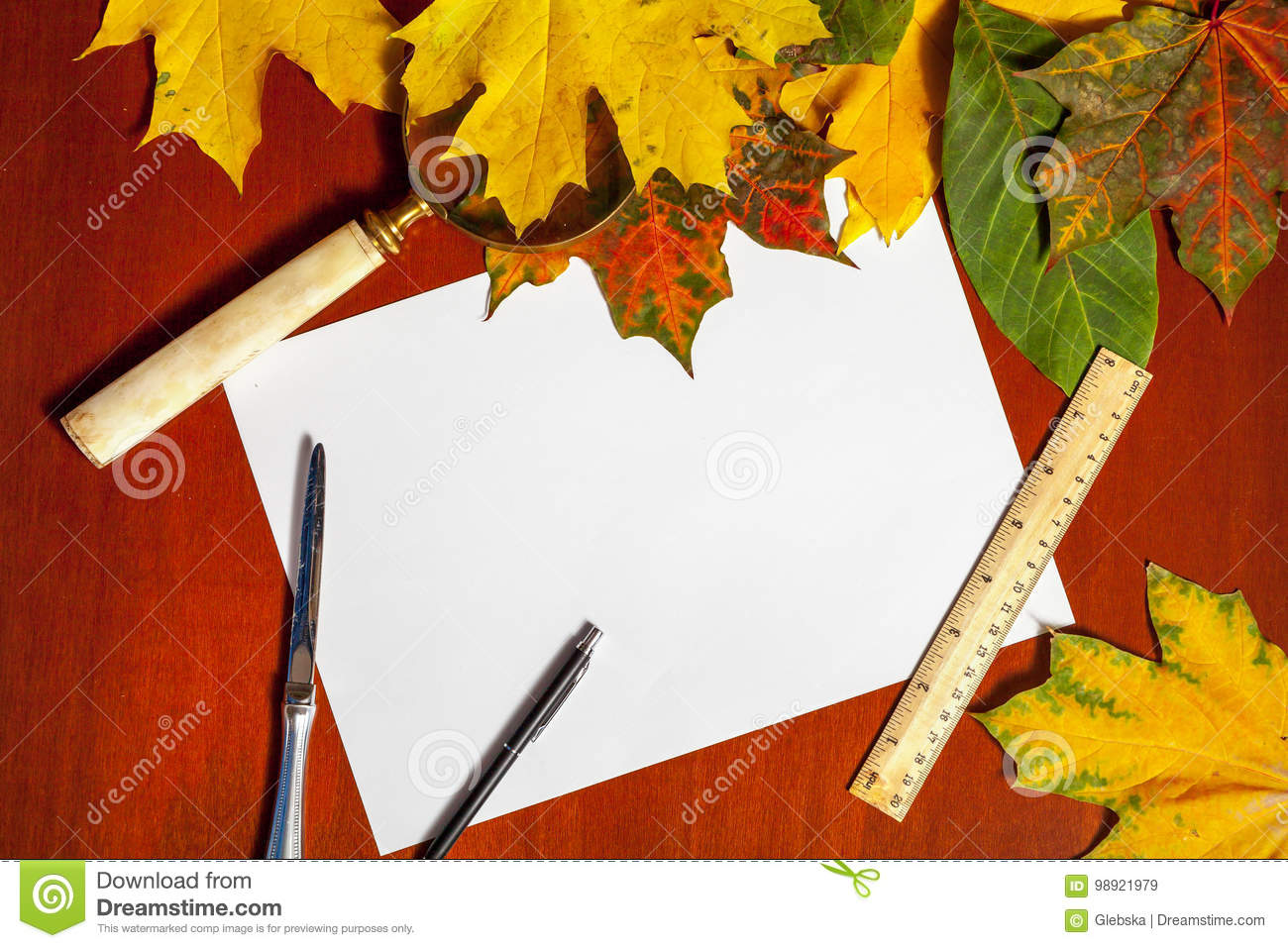 autumn stationery set fallen maple leaves and stationery items