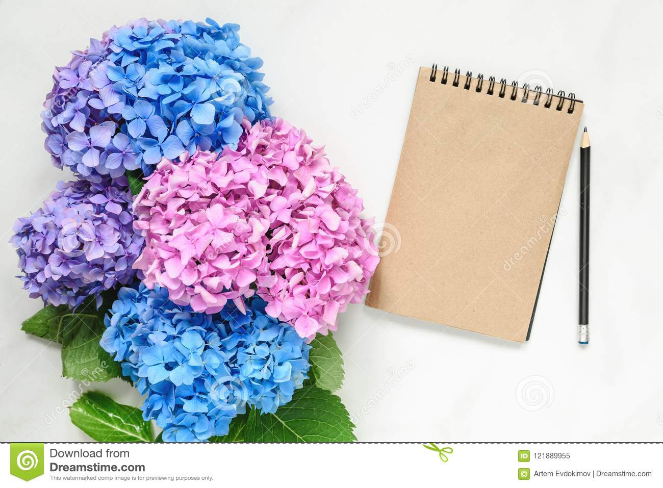 Blank Vintage Paper Notebook Withblue And Pink Hydrangea Flowers