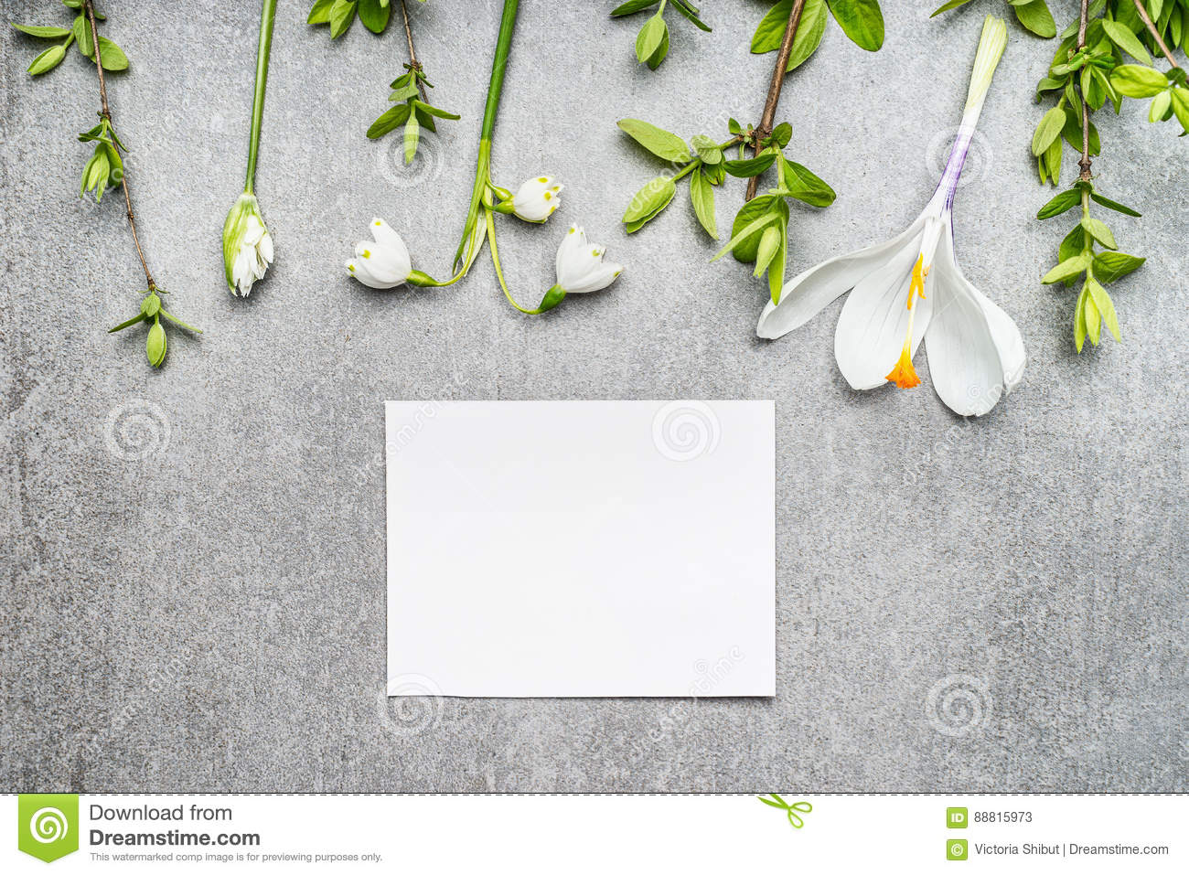 Blank white card with snowdrop, crocuses flowers and spring twigs, top view. Springtime