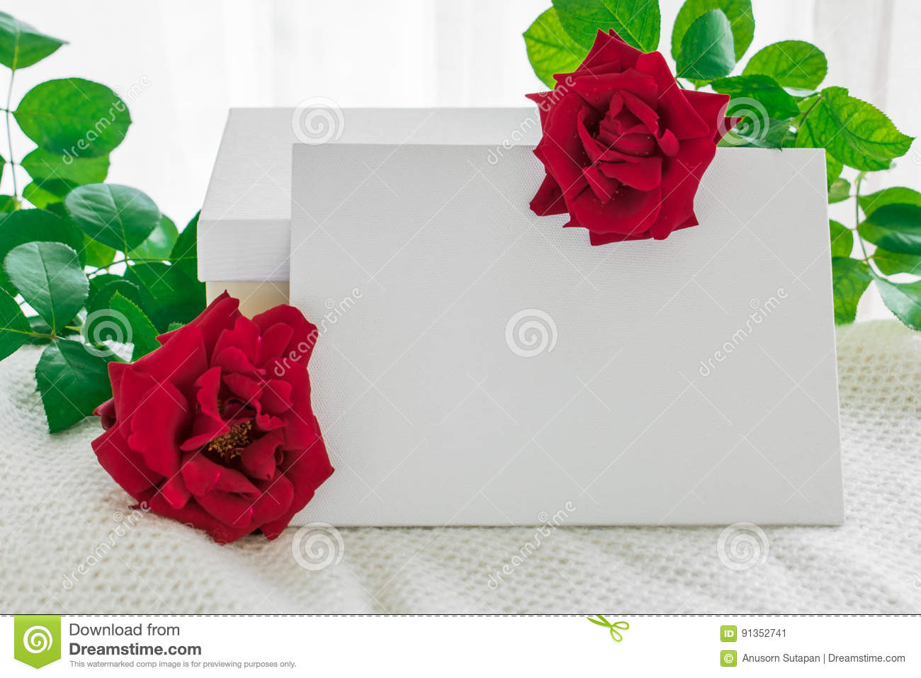 Blank White Frame With Gift Box And Red Rose Flowers On Knitted ...