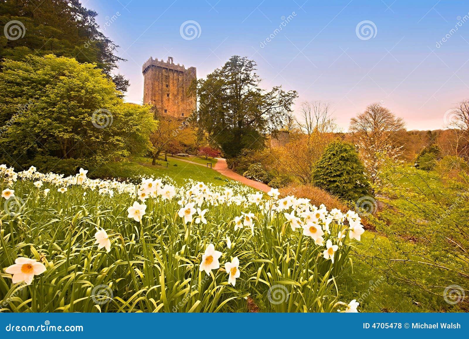 Blarney Royalty Free Stock Photos Image 4705478