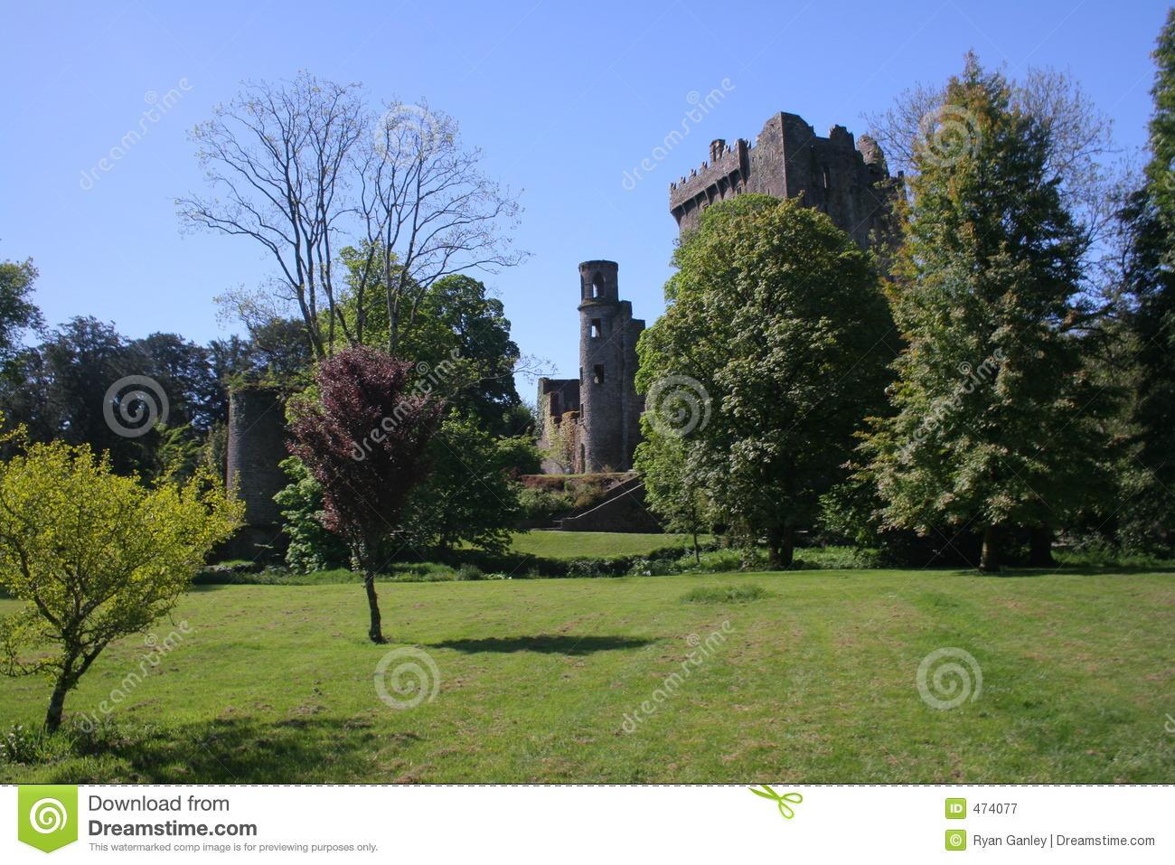 Blarney Castle and the field